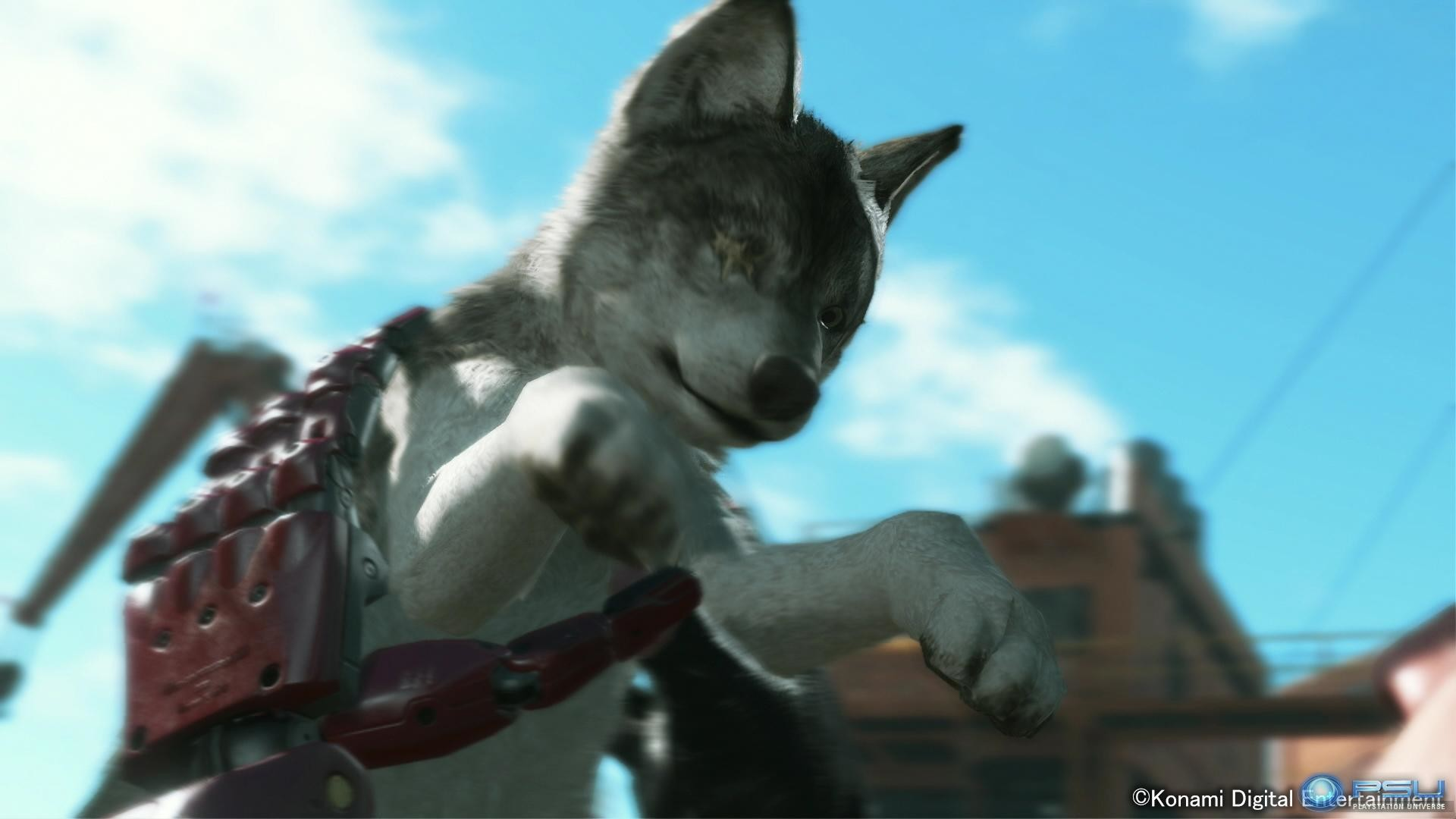 A video was also released yesterday revealing the orphaned pup who has been  trained by Ocelot to help Big Boss on missions. Metal Gear …