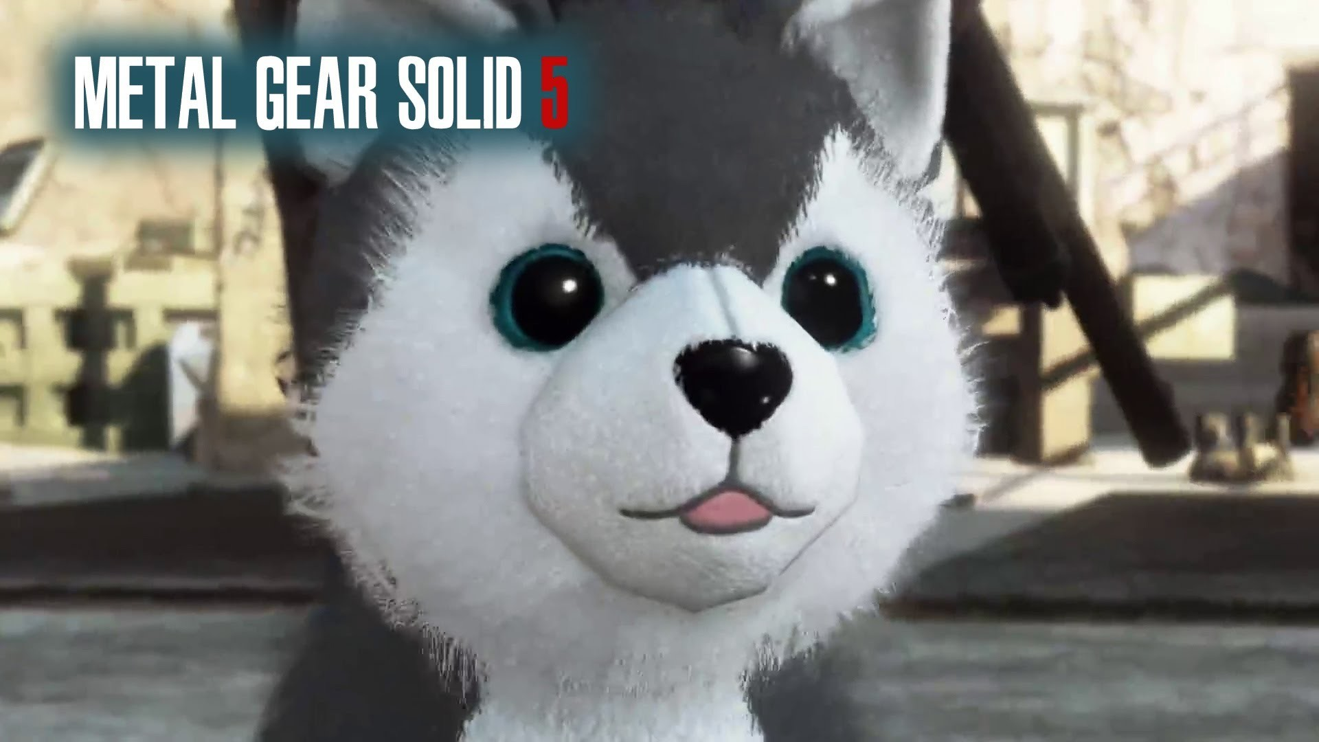 Metal Gear Solid 5 Phantom Pain, DD Diamond Dog Location How To Find, The  Cute Puppy Dog – YouTube