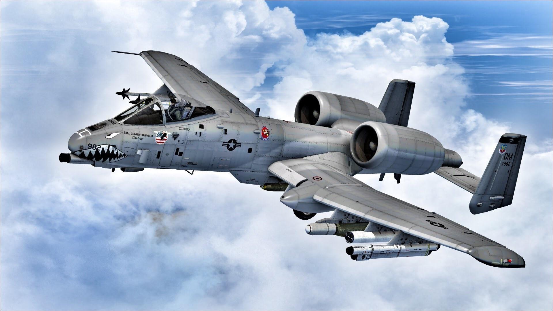 Flight Simulator X[FSX] A-10 Warthog …