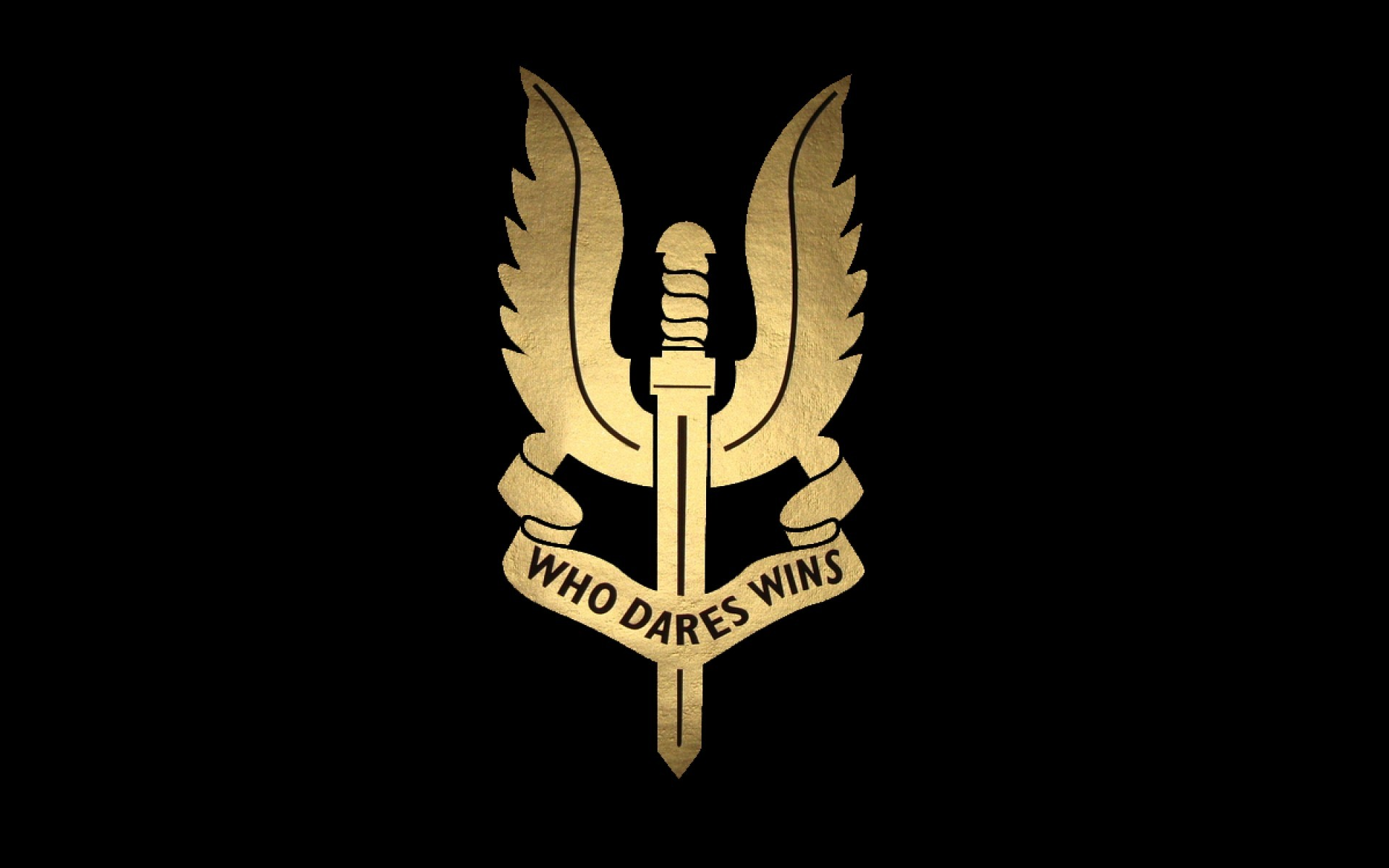 … Force; Special Air Service Logo