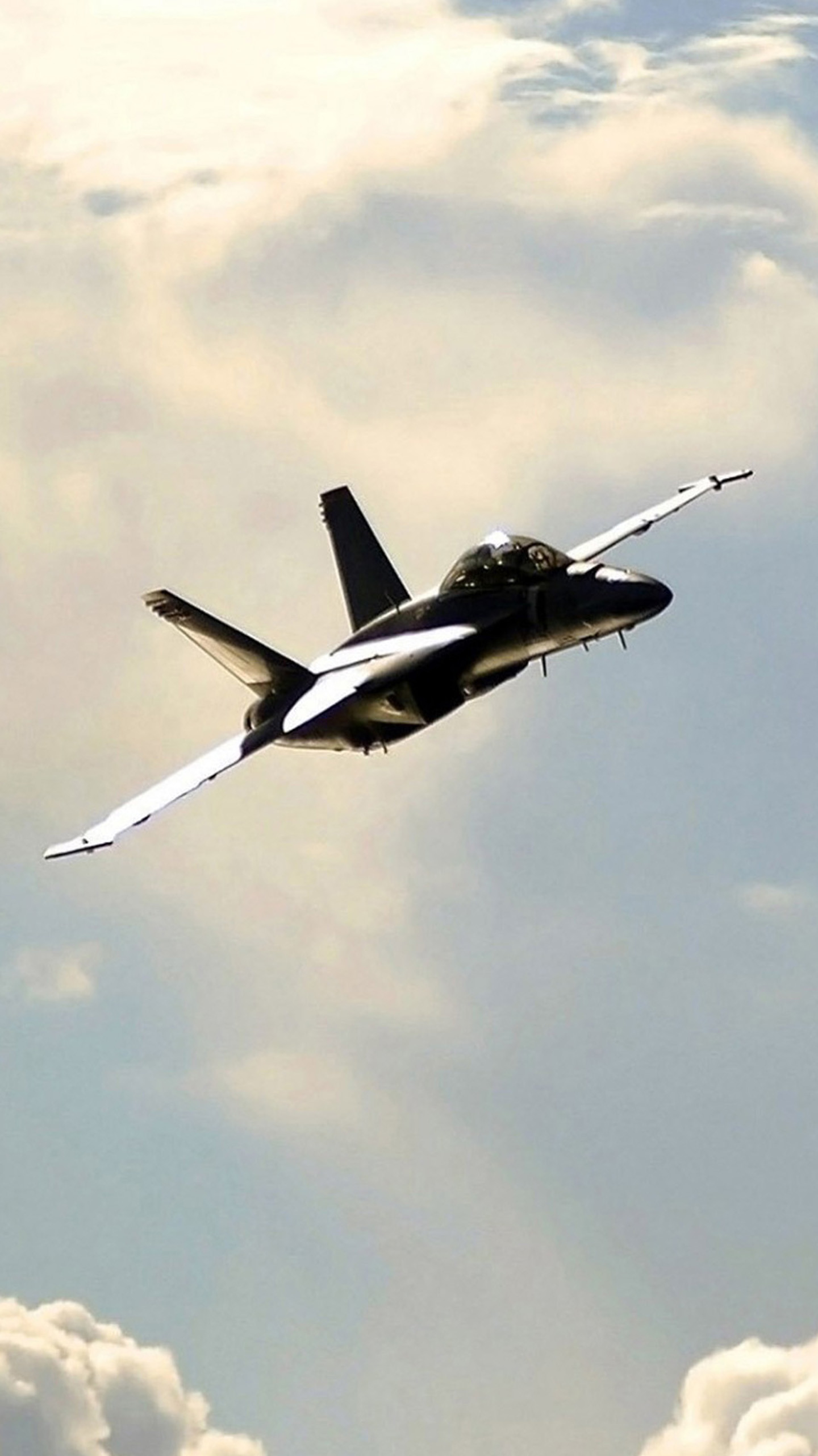 Navy F 18 Hornet Wallpaper