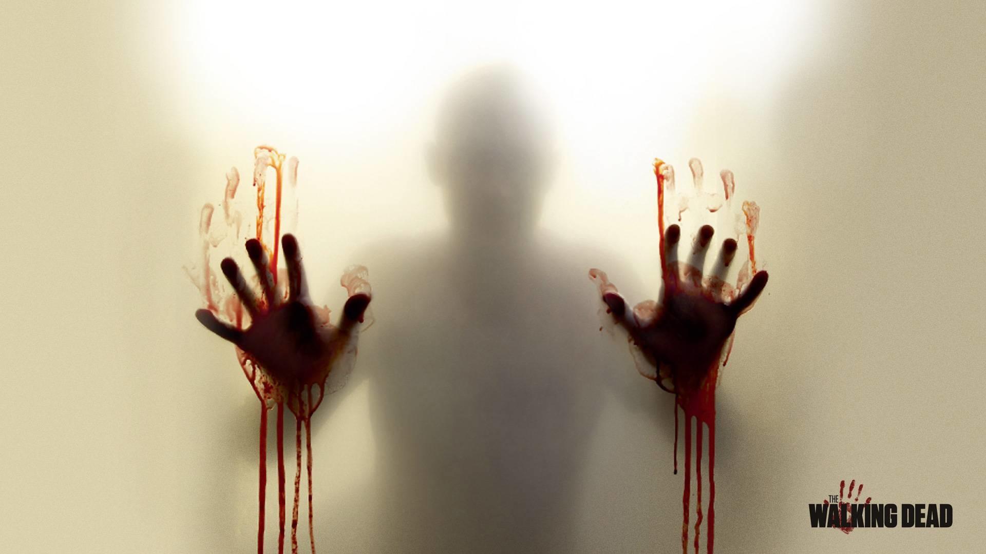 The Walking Dead – The Walking Dead Wallpaper