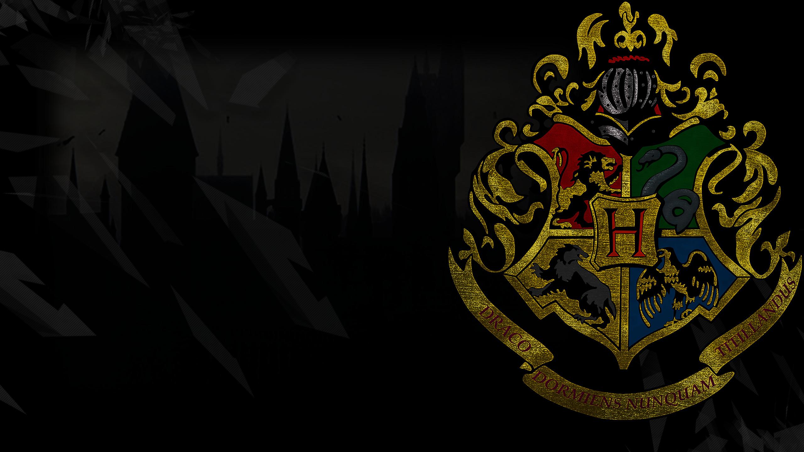 Movie – Harry Potter Gryffindor Slytherin Hufflepuff Ravenclaw Wallpaper