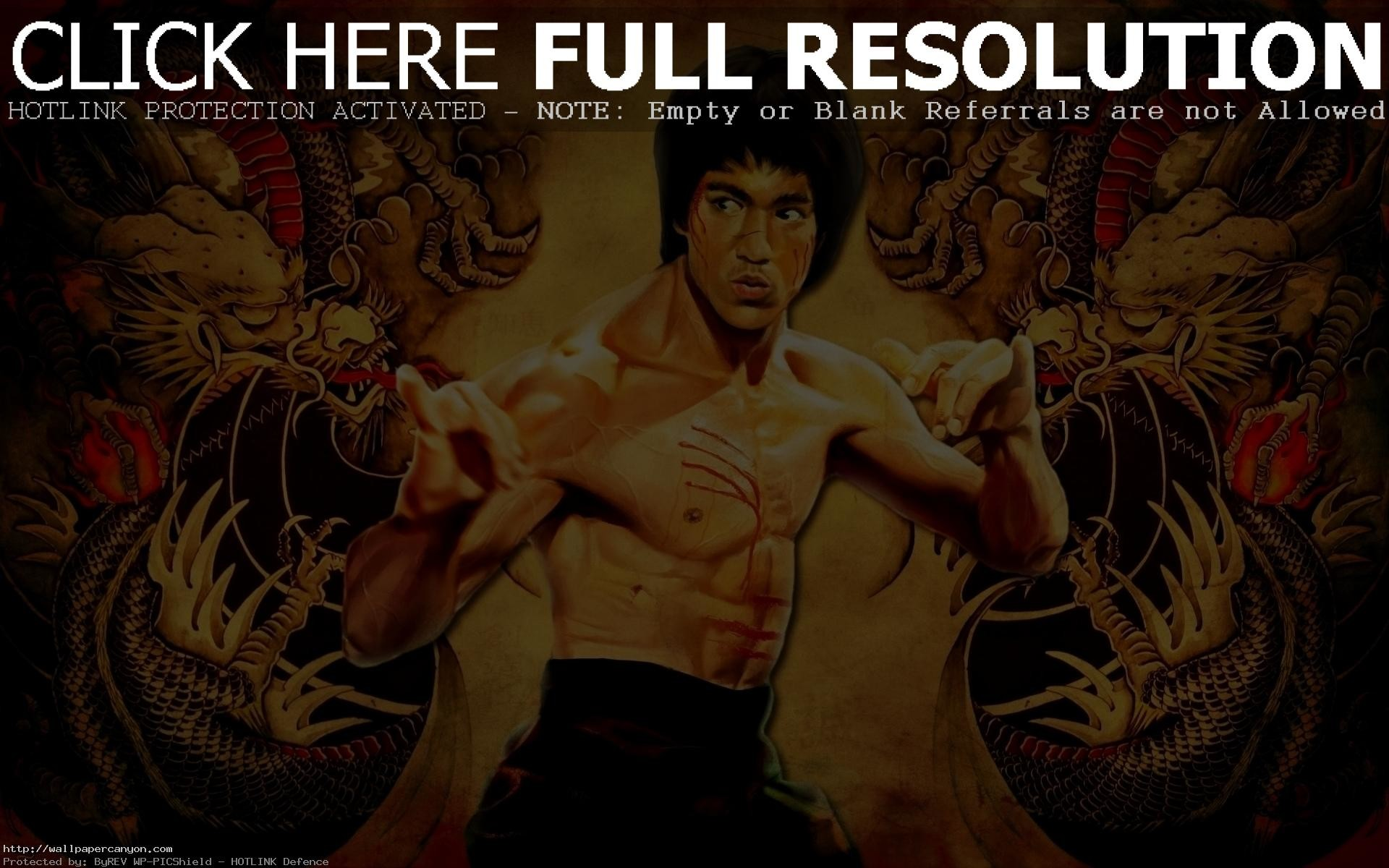 Bruce Lee Wallpaper 1024×768 Bruce Lee Wallpaper (49 Wallpapers)   Adorable  Wallpapers