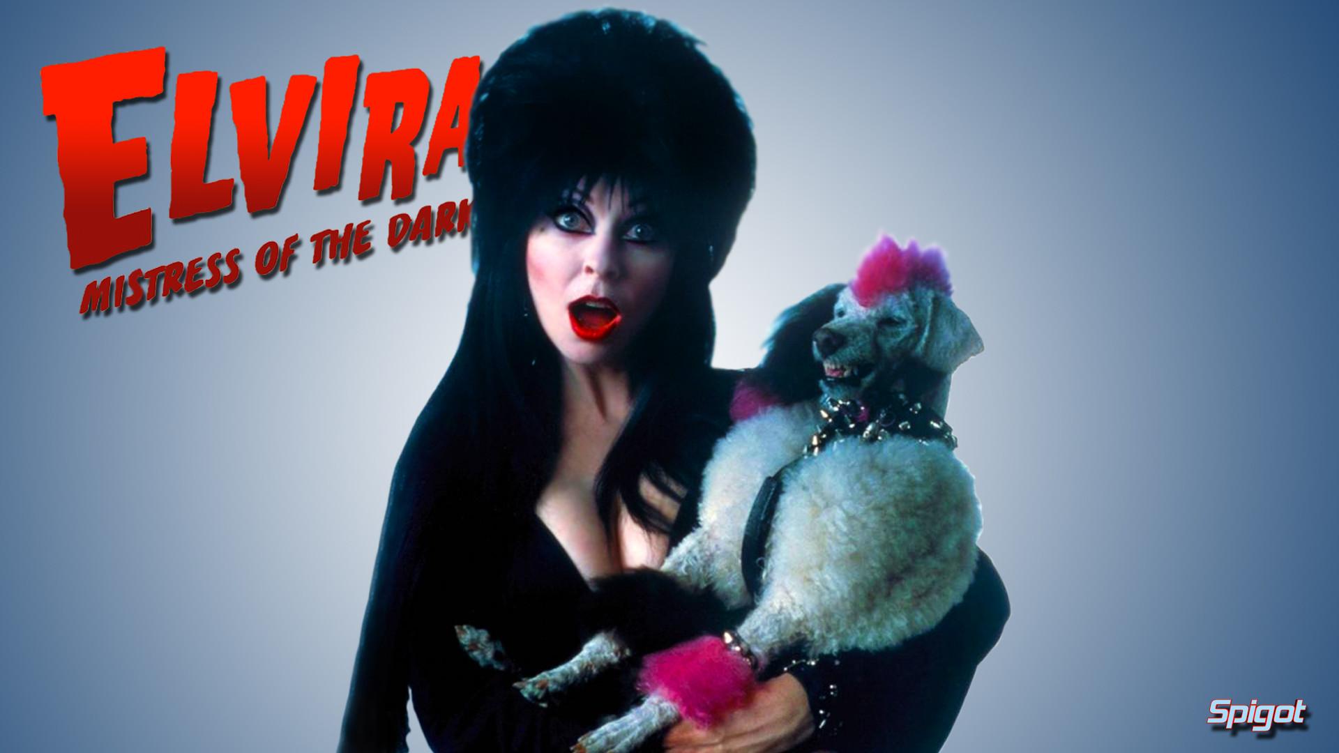 elvira, mistress of the dark, film, television, horror   CHCHCH AHAHAH    Pinterest   Cassandra peterson, Horror and Televisions