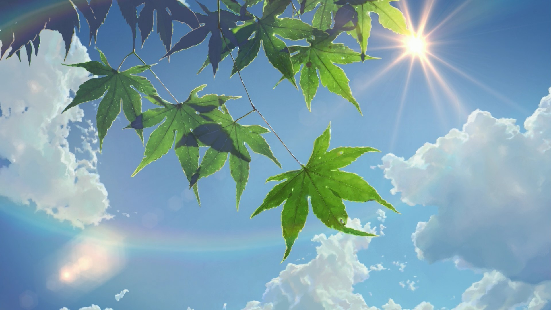 summer, Sunlight, Leaves, The Garden Of Words, Sun Rays, Clouds, Makoto  Shinkai Wallpapers HD / Desktop and Mobile Backgrounds