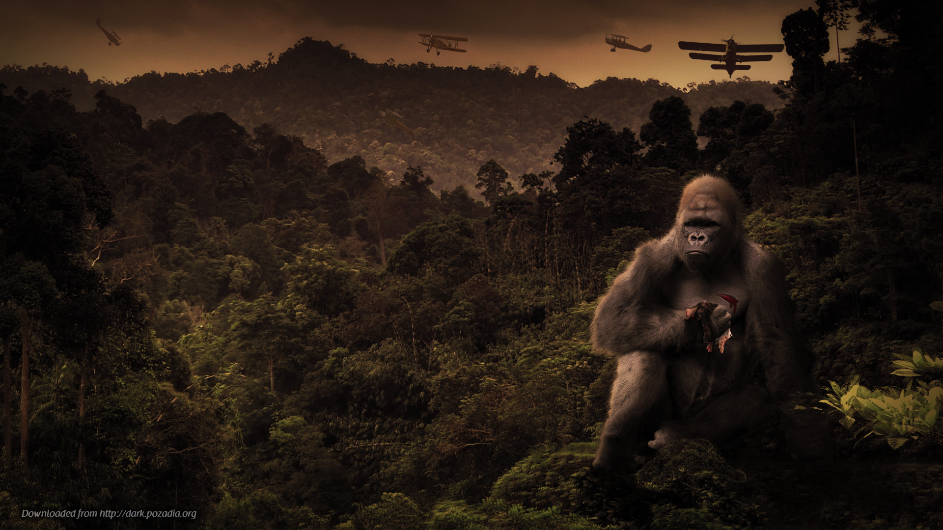 King Kong Vs Godzilla HD Wide Wallpaper for Widescreen (70 Wallpapers)