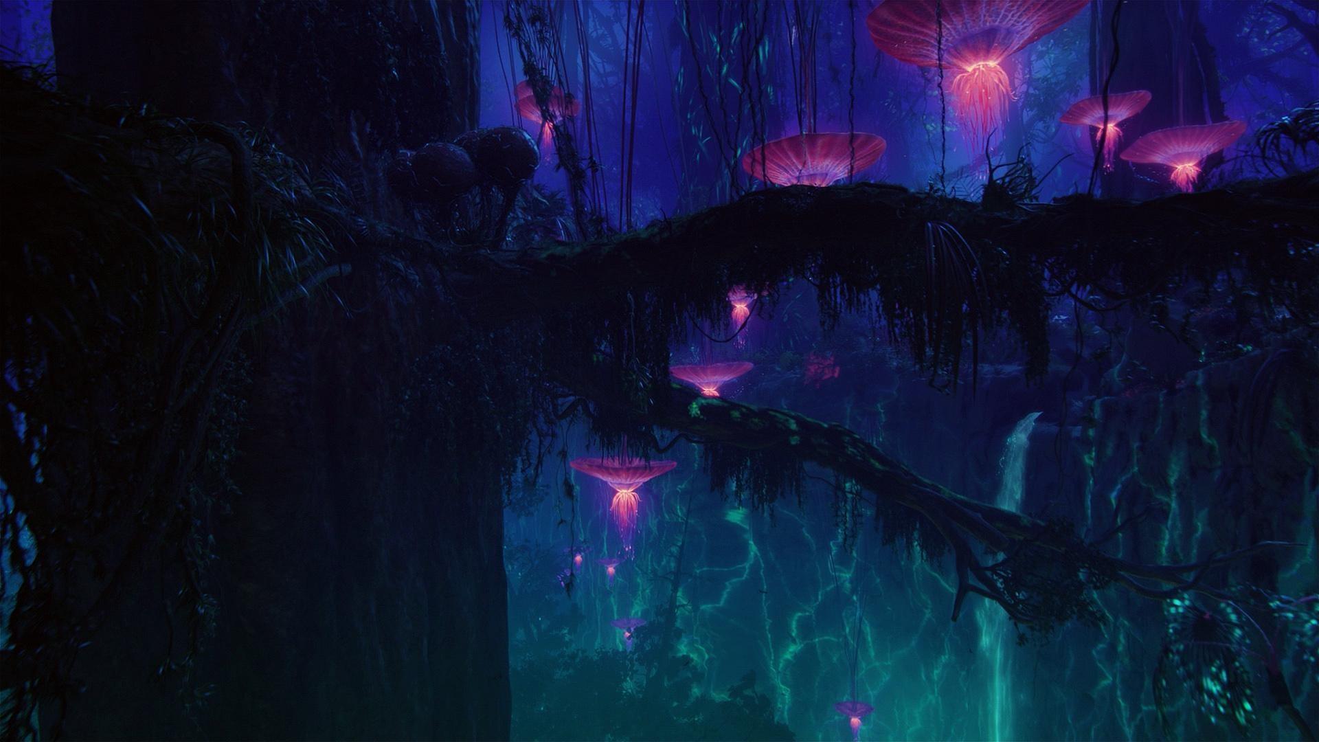 avatar   Something magical….movie stills   Pinterest   Avatar, Creature  concept and Fantasy landscape