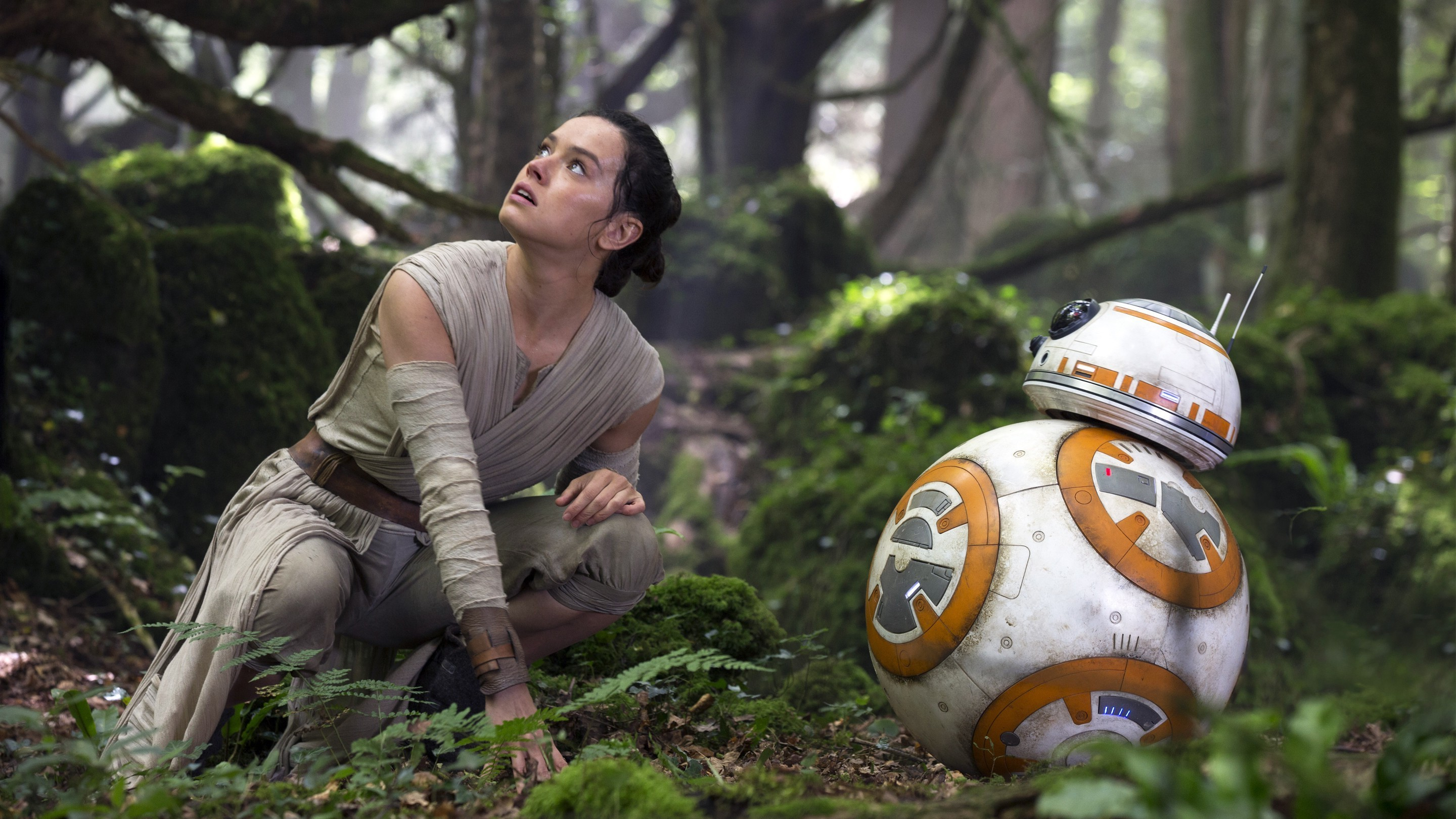 Rey, BB 8, Movies, Star Wars: The Force Awakens Wallpapers HD / Desktop and  Mobile Backgrounds