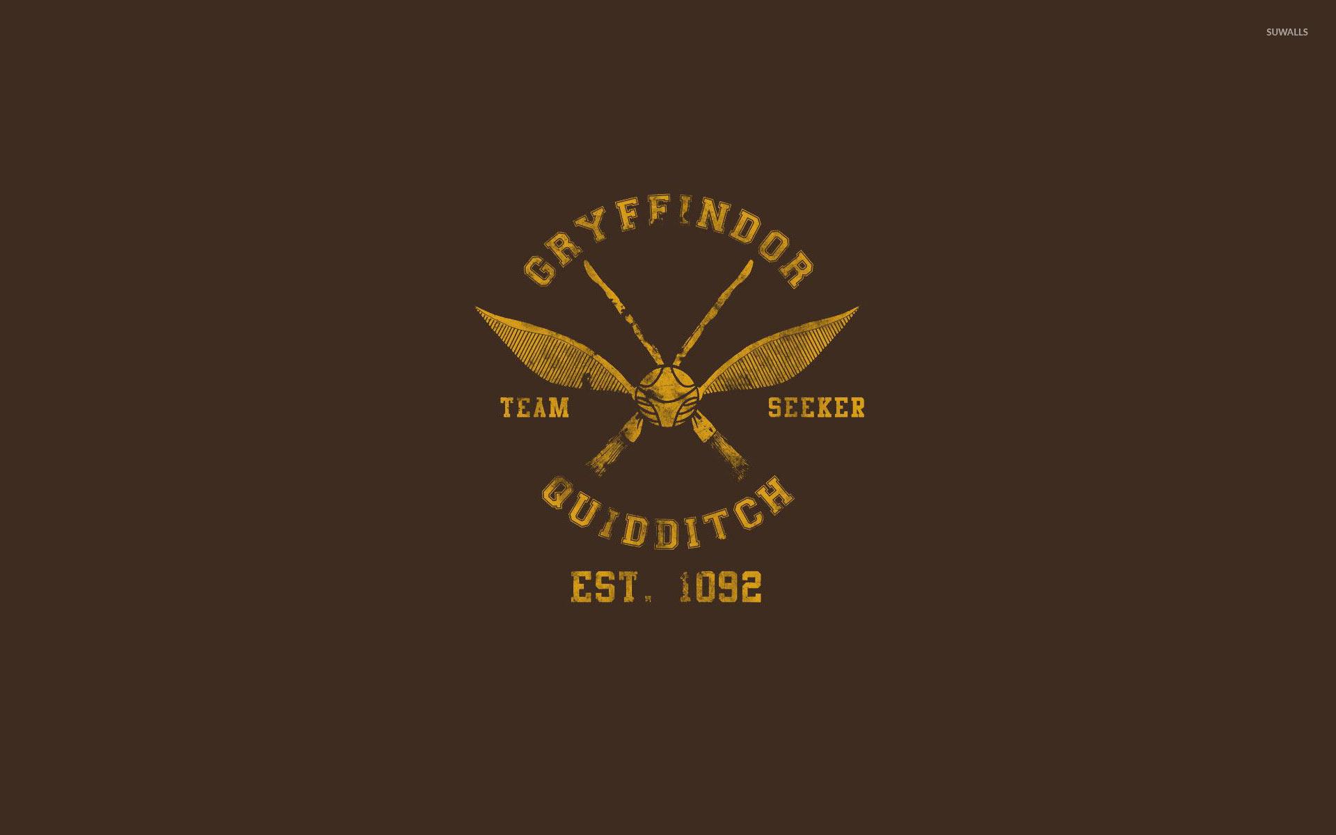 Gryffindor Quidditch team wallpaper · Vector · Harry Potter · Gryffindor …