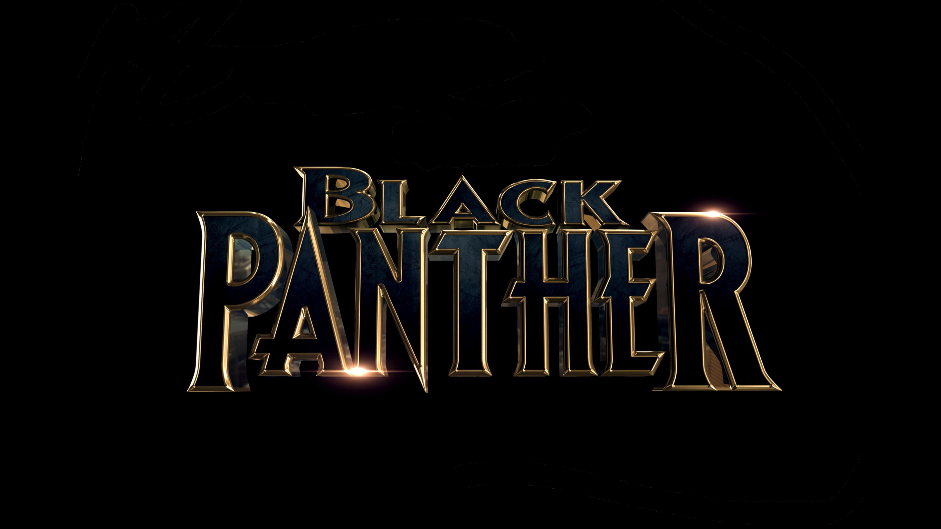 Black Panther 2018 Movie 1920×1080 Resolution