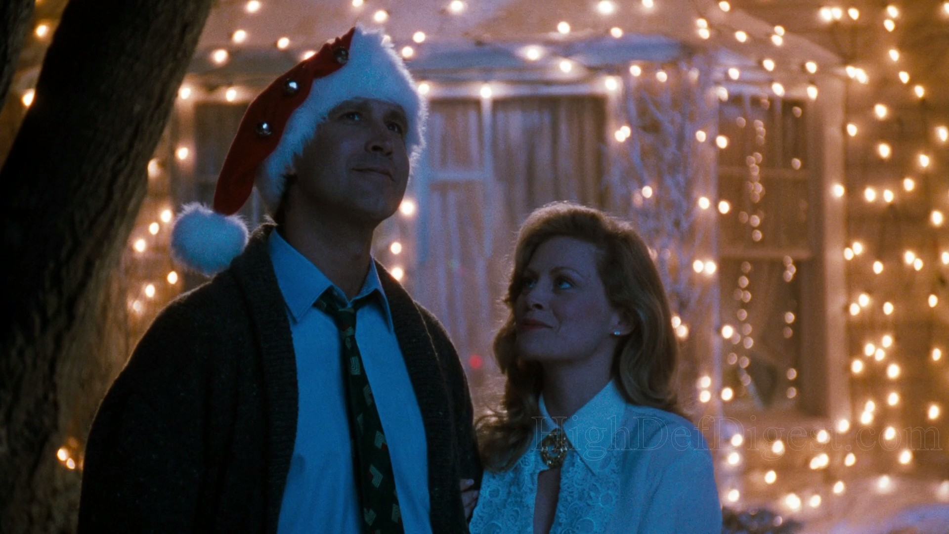 Over the years, 'National Lampoon's Christmas Vacation' has amassed a  strong following to become a modern holiday classic and a traditional watch  for the …
