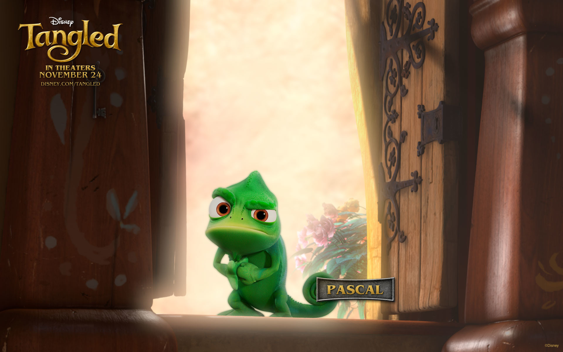 Pascal from Disney's Tangled wallpaper – Click picture for high resolution  HD wallpaper