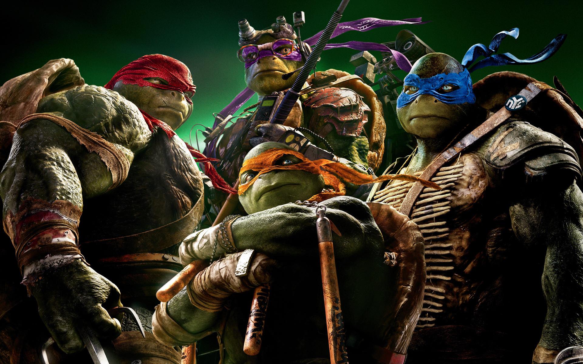 Teenage Mutant Ninja Turtles TMNT 2014