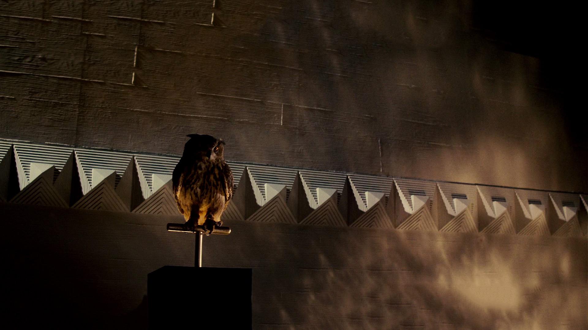 BladeRunner-Owl-1920×1080