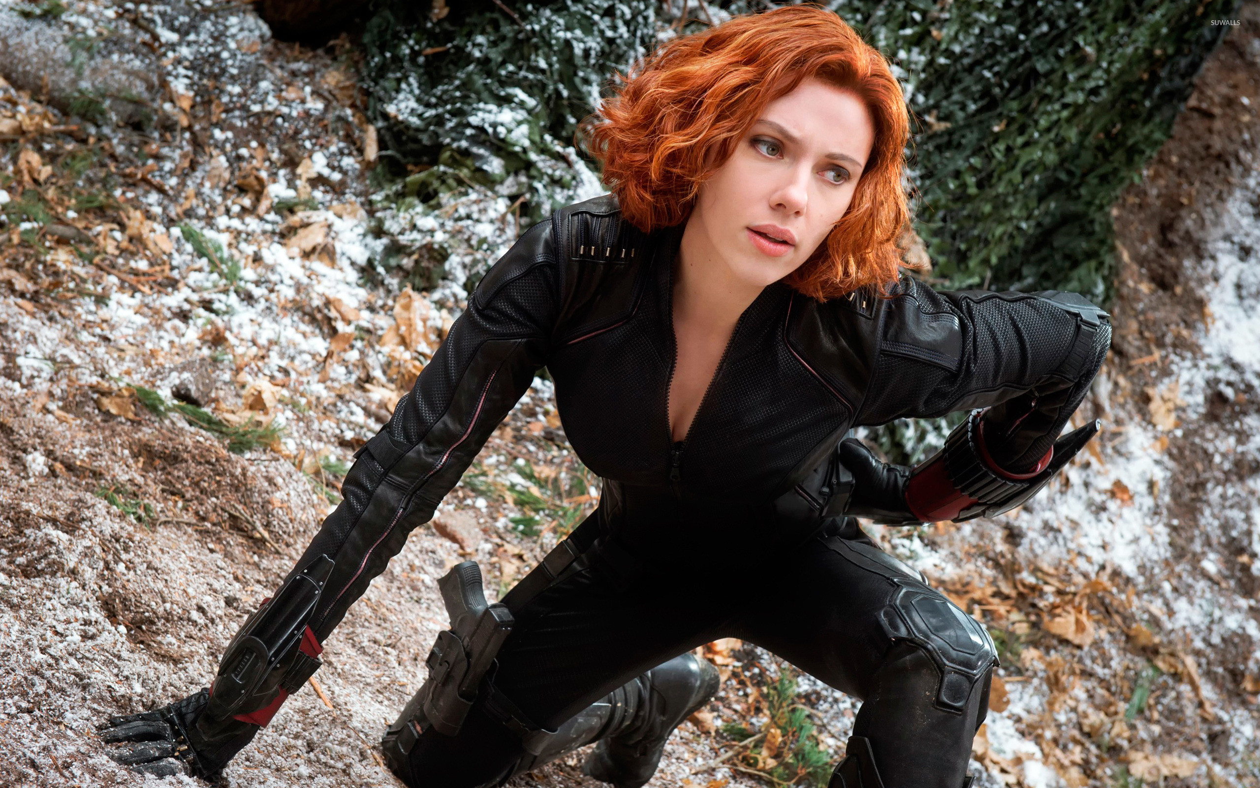 Black Widow – Avengers: Age of Ultron wallpaper