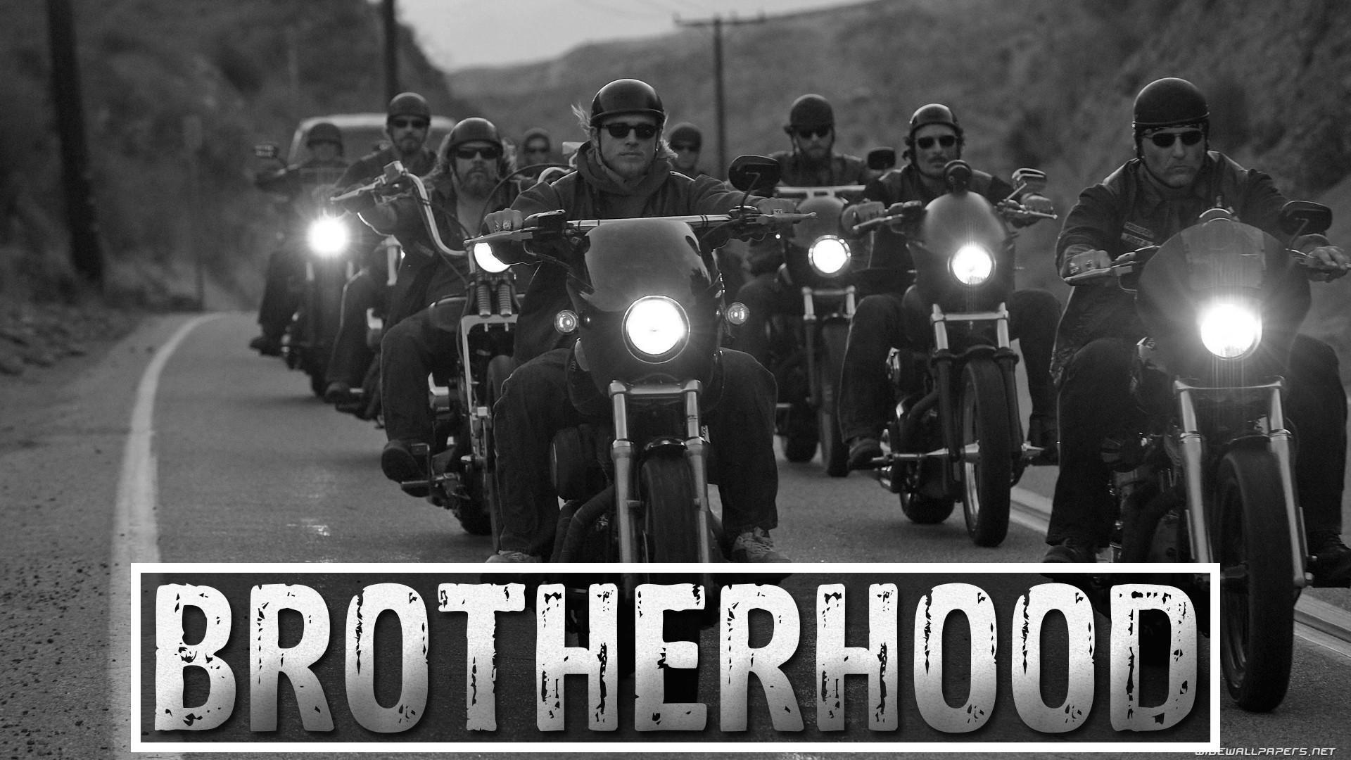 motorcycles harley-davidson tv shows jax teller wallpaper | (43223 .