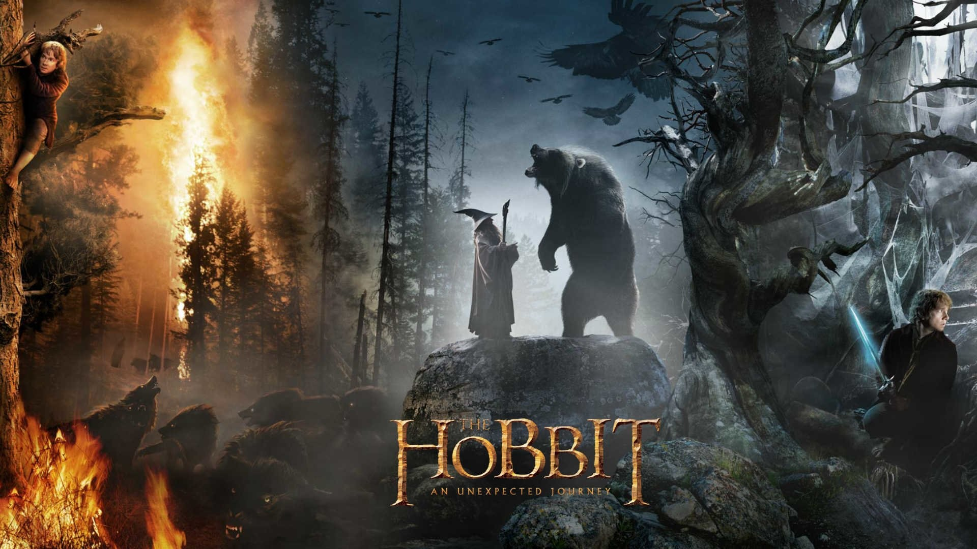 Movie – The Hobbit: An Unexpected Journey Wallpaper