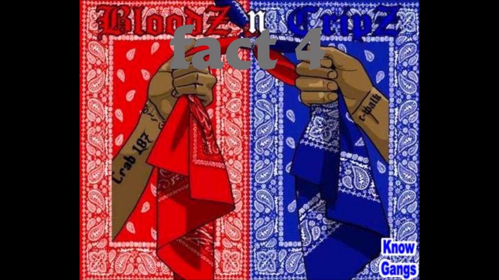 10 FACTS THAT EVERYBODY SHOULD KNOW ABOUT #001Crips and Bloods