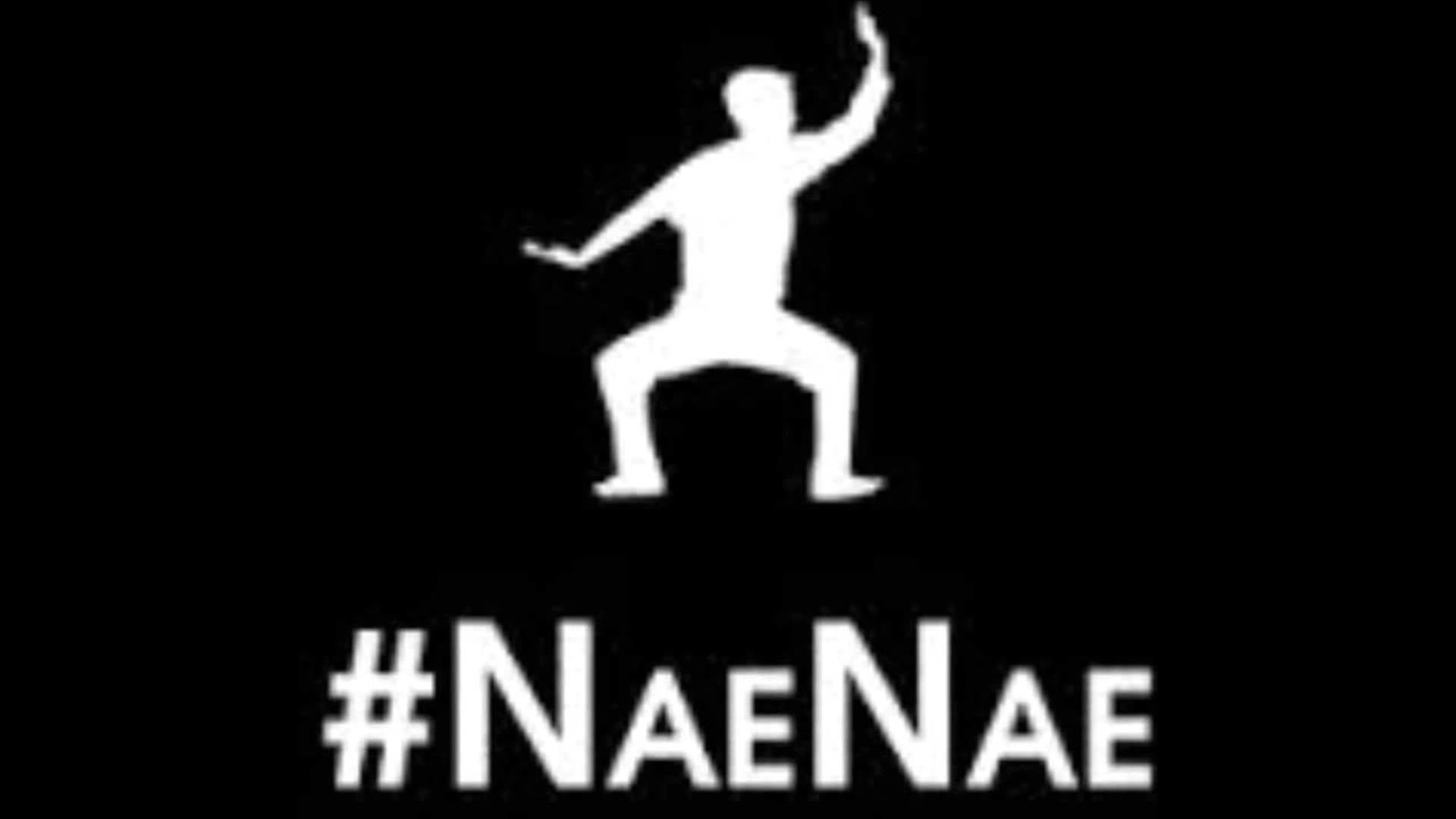 Nae Nae WEARETOONZ official song HD – YouTube