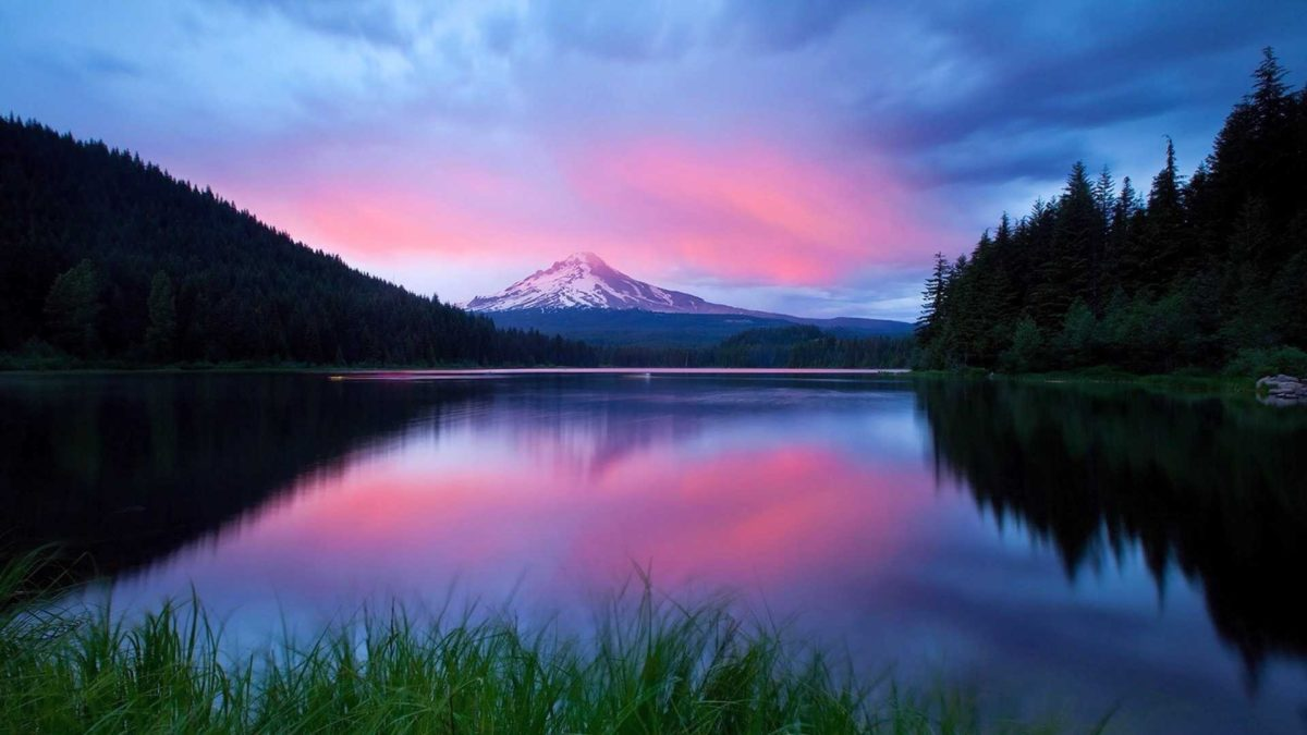 Psychedelic Tag – Sunset Reflection Grass Blue Lake Sky Water Pink Trees  Nature Forest Snow Clouds