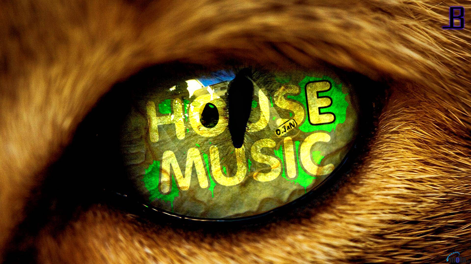 House Music wallpaper (HD) by LeadBeats on DeviantArt