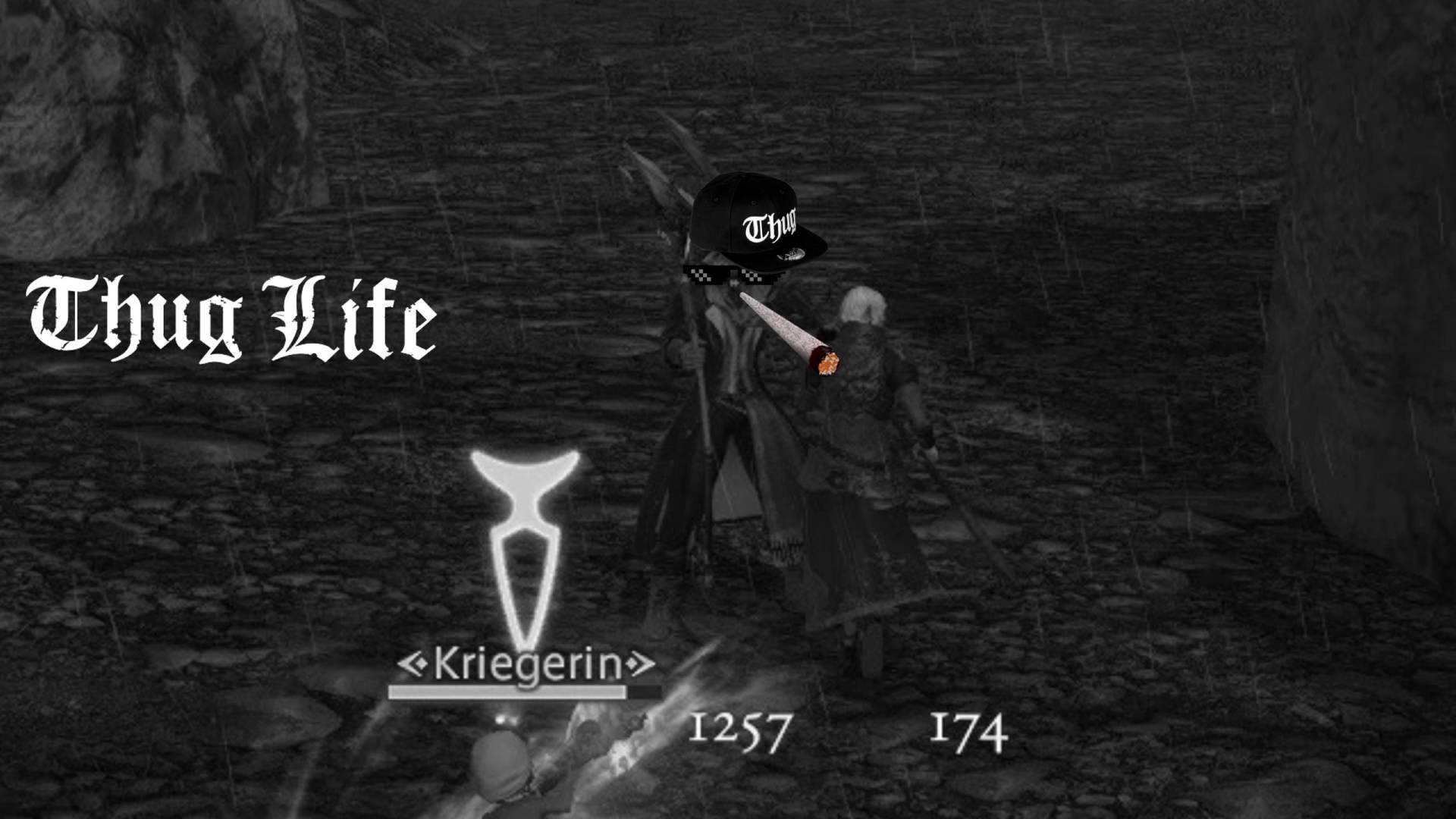 Final Fantasy XIV PvP Robbenholm [THUG LIFE]