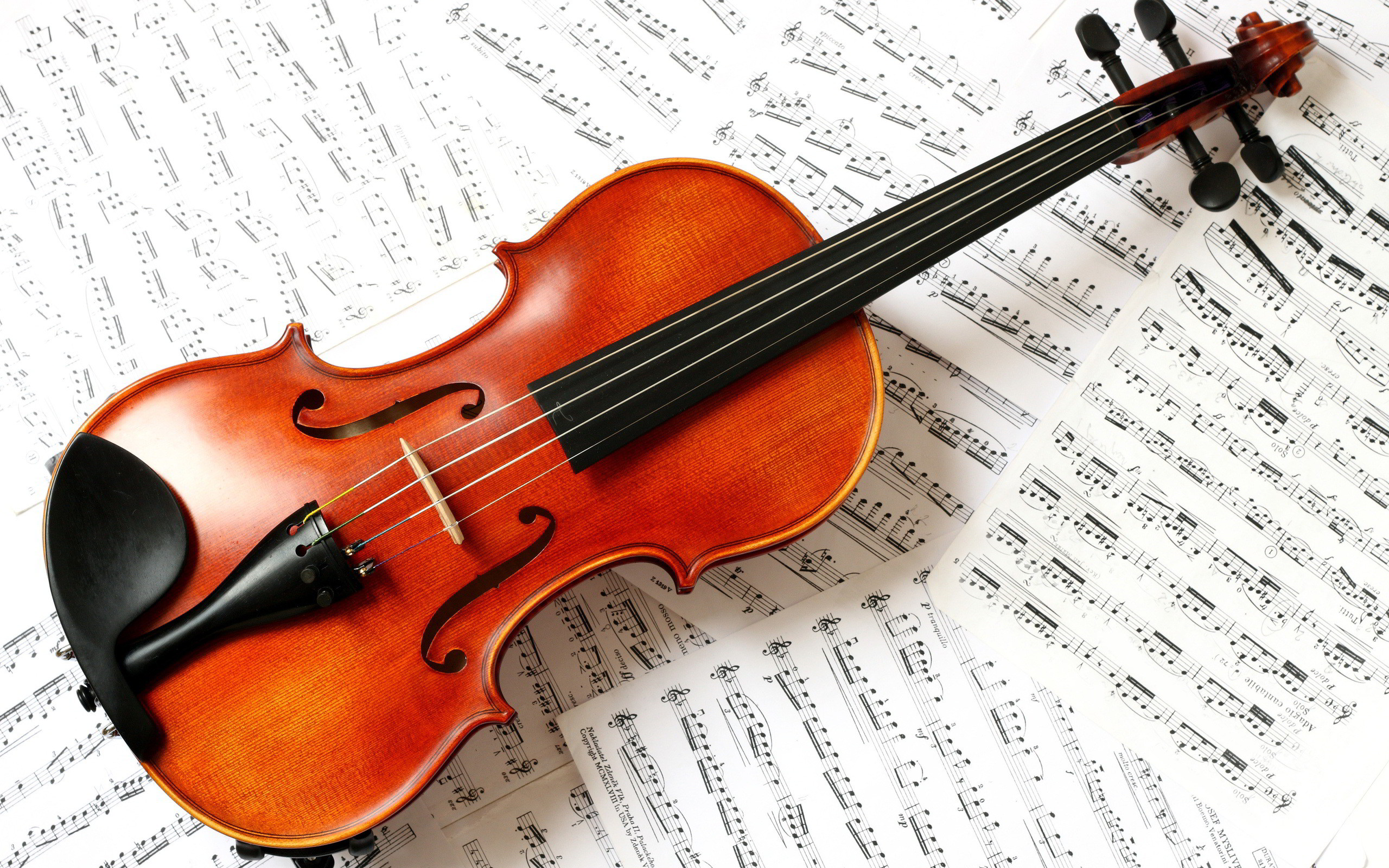 Related Wallpapers from Fantastic Piano Wallpaper. violin