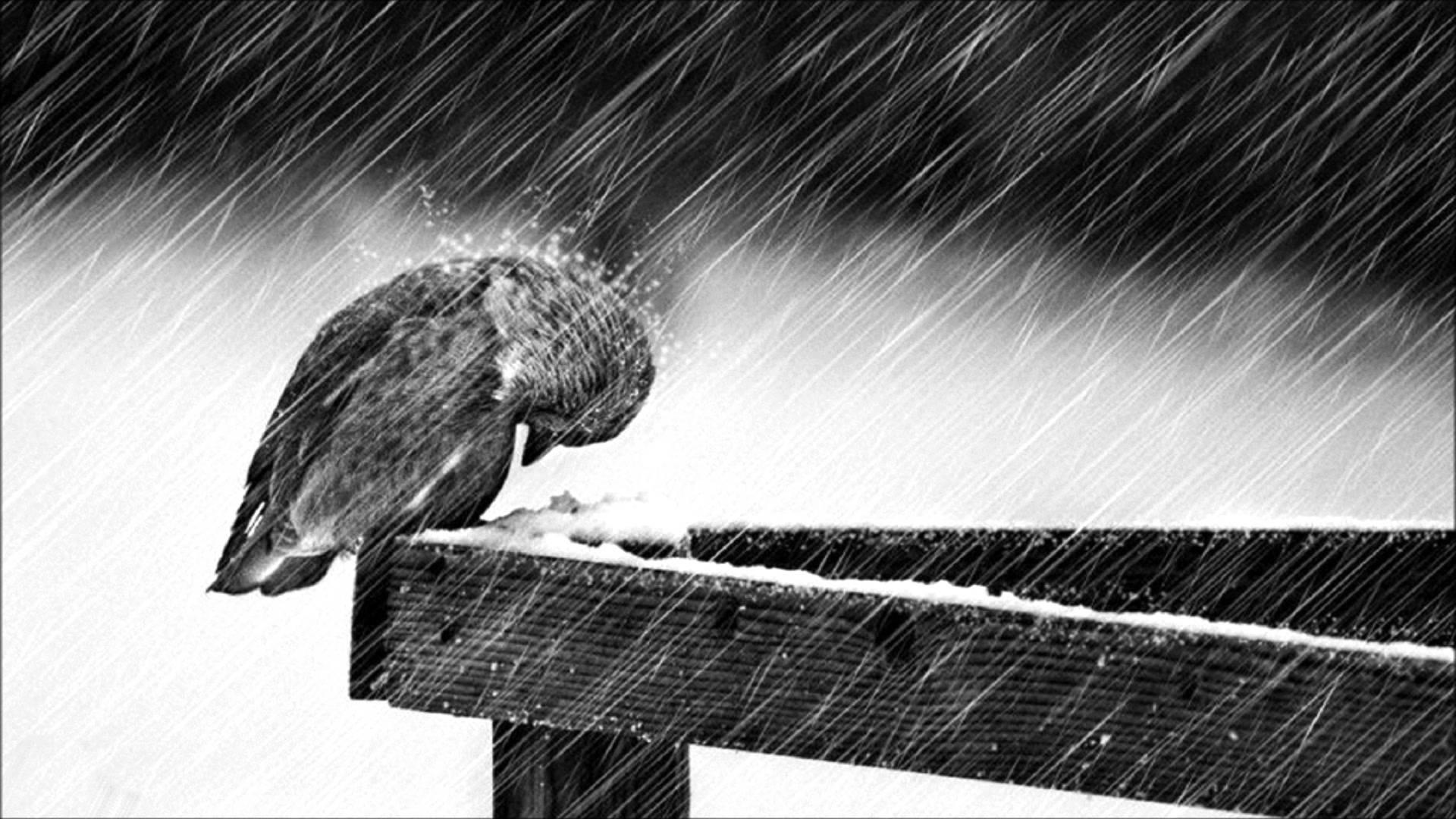 """Cold"" РJorge M̩ndez (Sad Piano & Violin Instrumental) РYouTube"