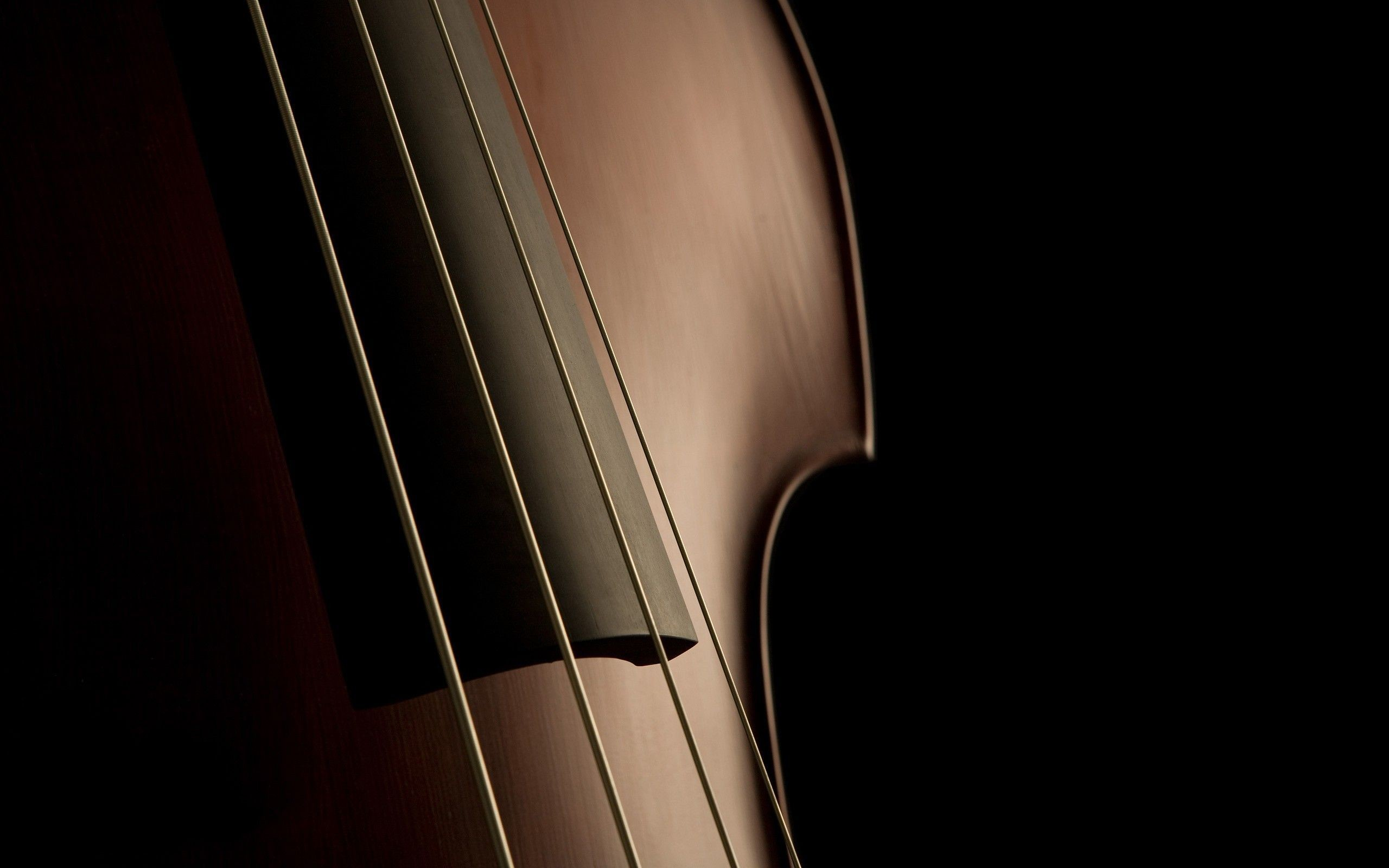 Awesome Cello Pictures   Cello Wallpapers
