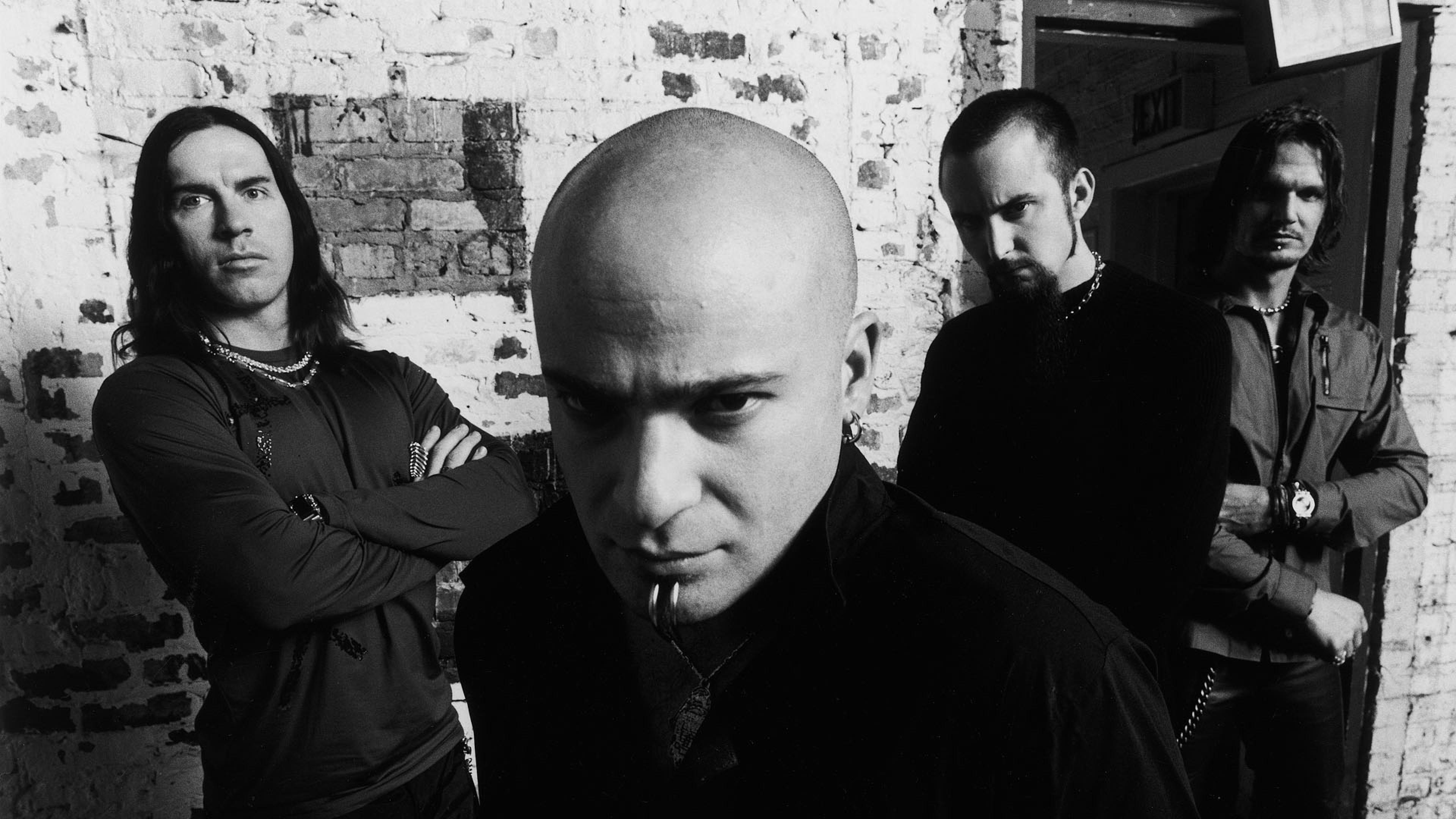 Wallpaper disturbed, band, members, bald, look