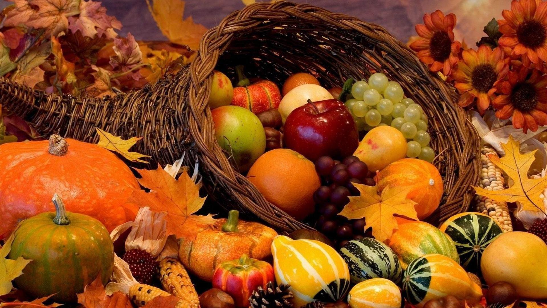 Autumn Harvest Wallpaper Widescreen