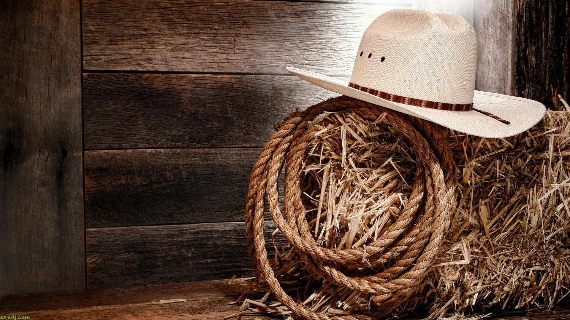 7. country-music-wallpaper-HD7-600×338