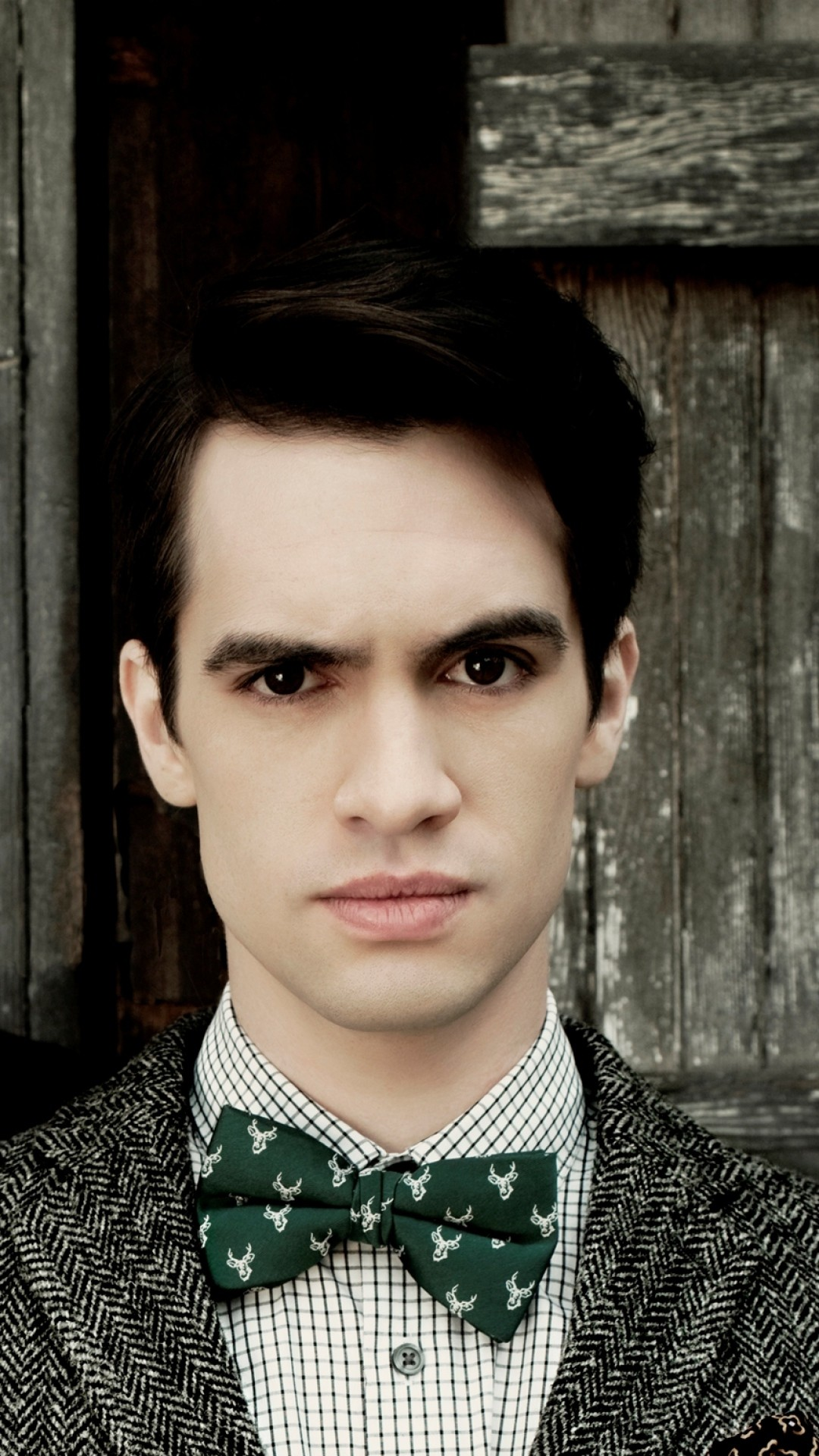 Wallpaper panic at the disco, brendon urie, spencer smith