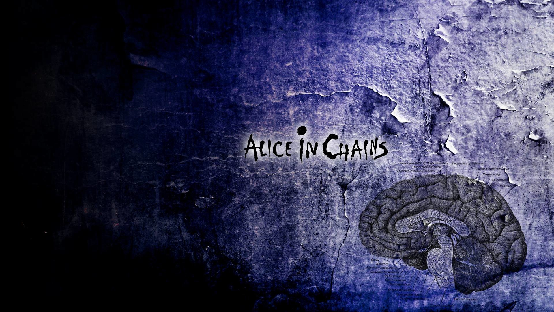 Alice In Chains HD by Hyphernate wallpaper | Style Favor – Photos .