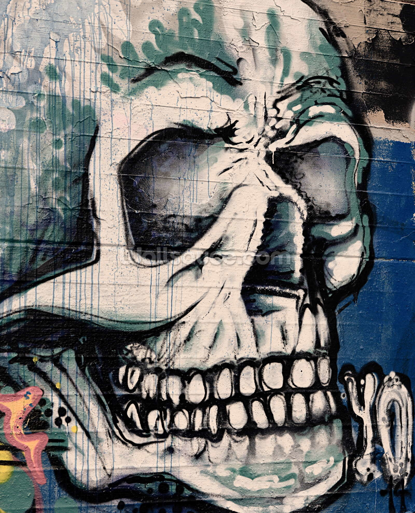 Graffiti – Skull Face Wallpaper Mural