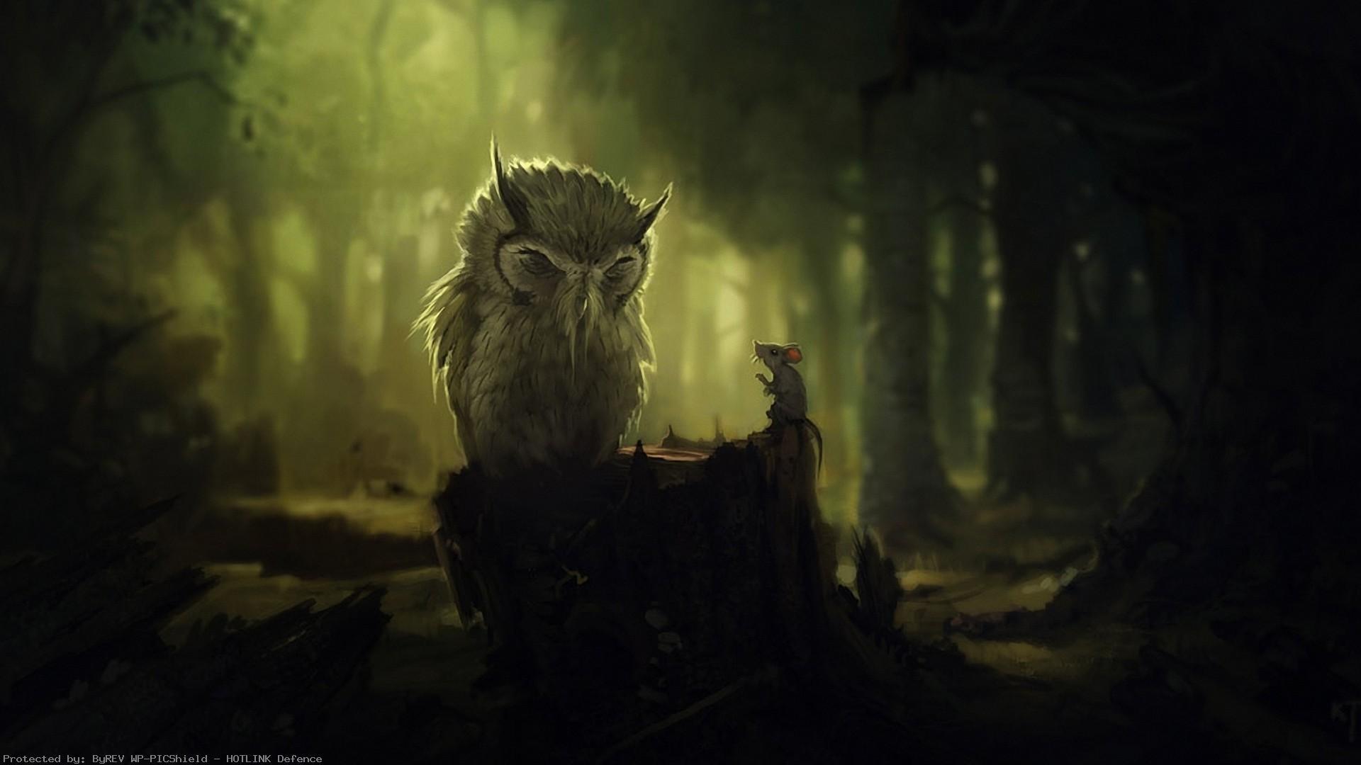 fantasy-art-hd-Forest-Birds-Fantasy-Art-Owls-