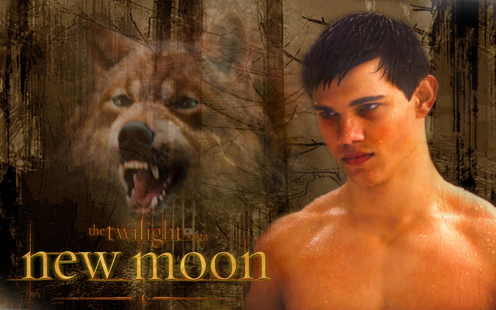 jacob Blac New Moon – Jacob Black Wallpaper (7270404) – Fanpop