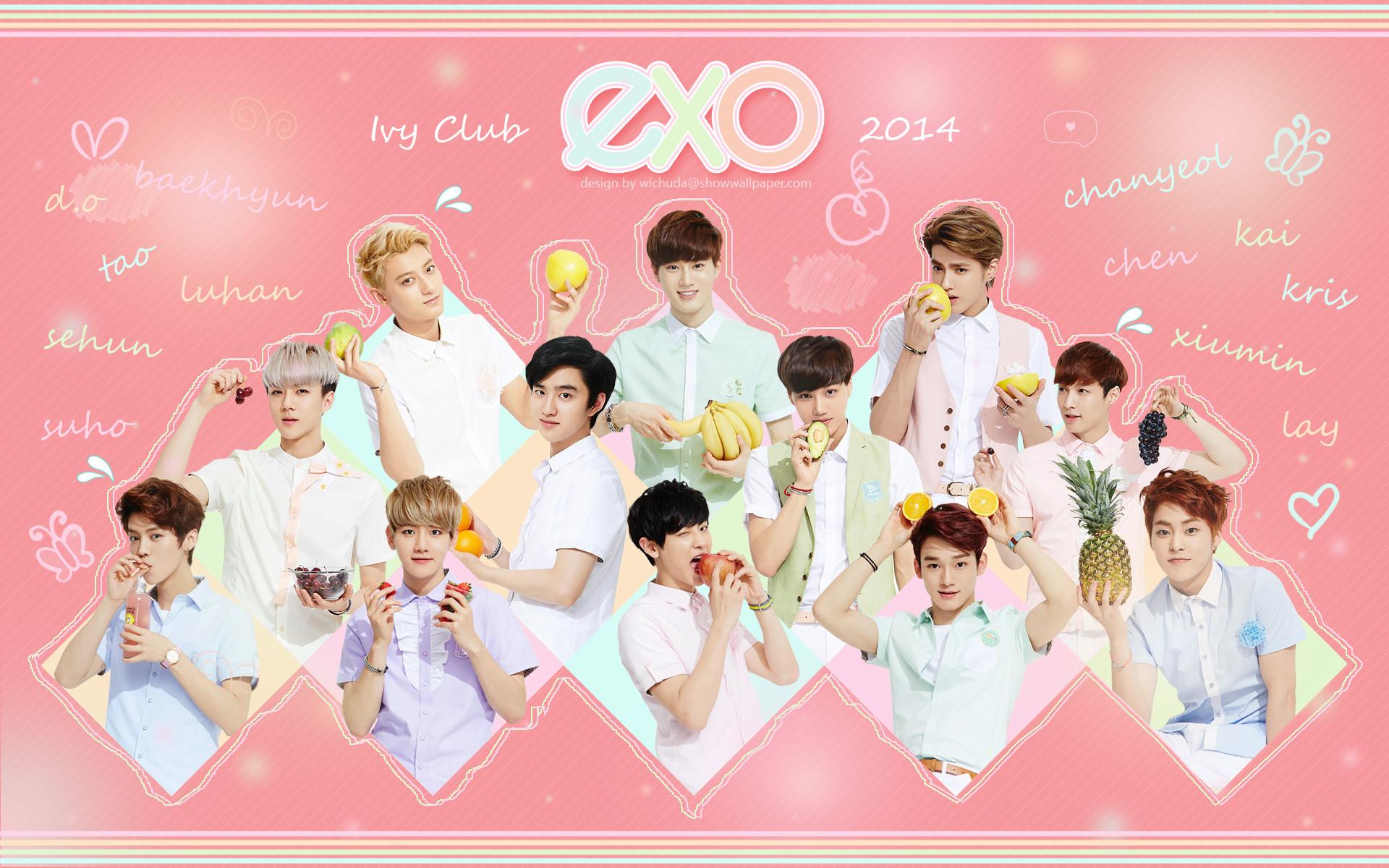 Exo Korea Boy Band 01 Wallpaper