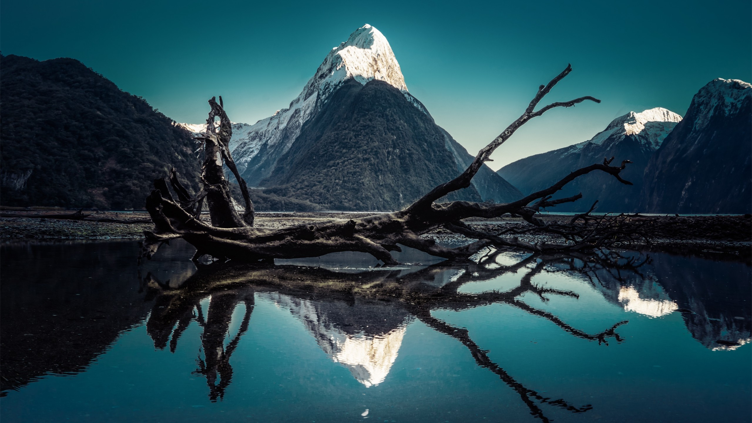 World / Milford Sound Wallpaper