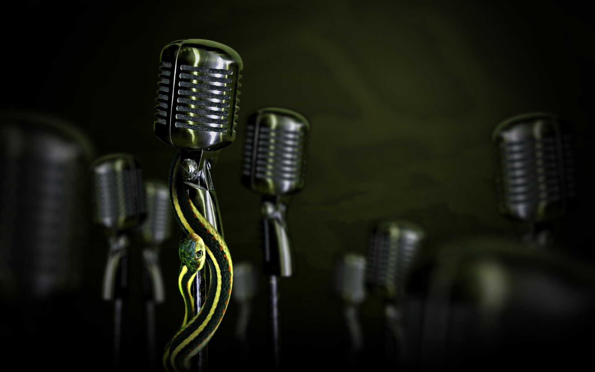 Free Snakes on Microphone wallpaper background