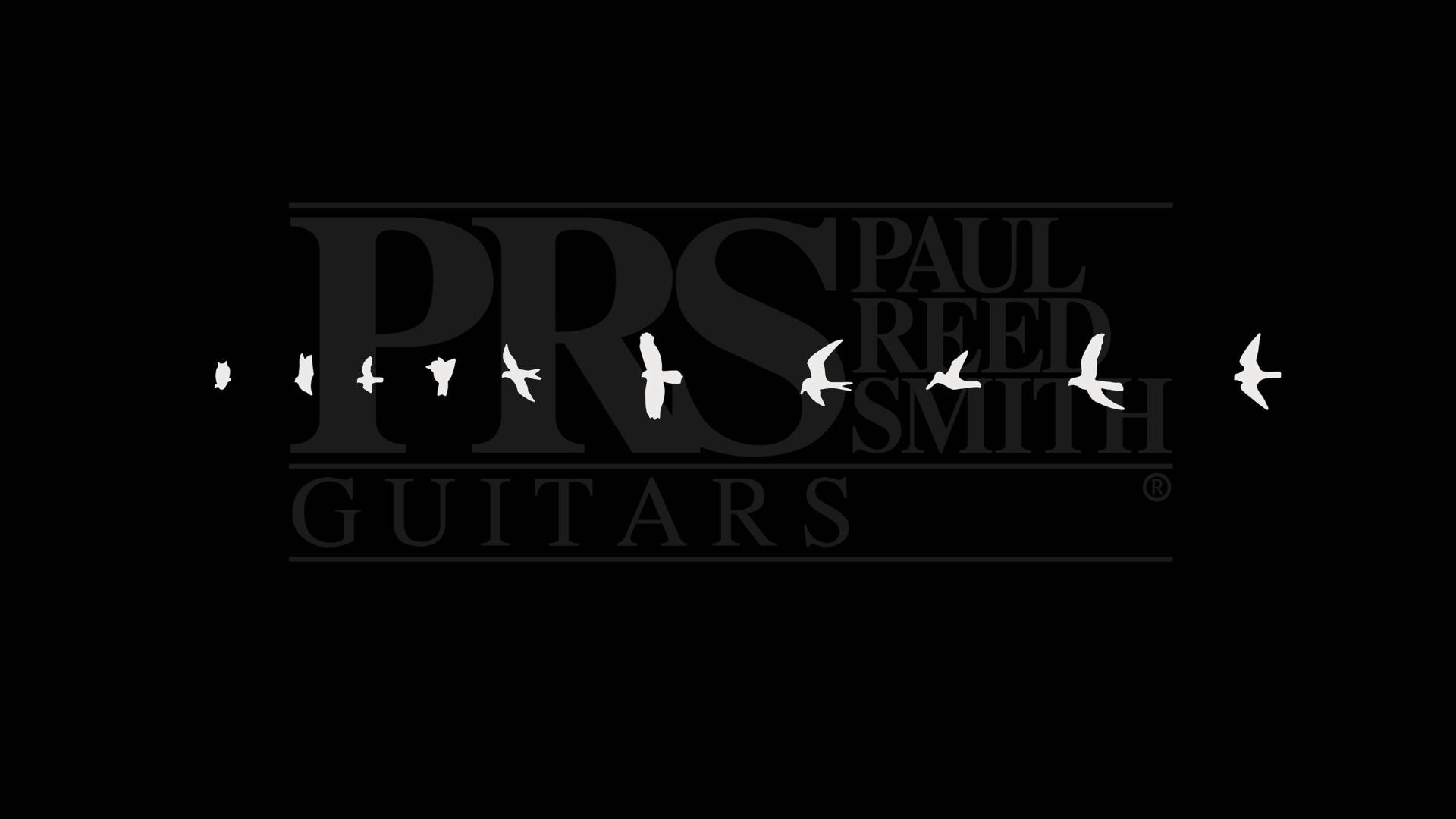 PRS Guitars Wallpaper by VendettAx87 PRS Guitars Wallpaper by VendettAx87