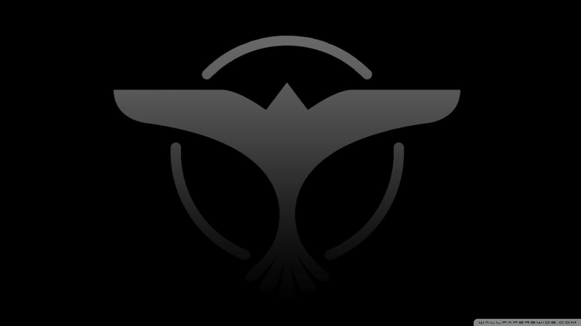 Dj Tiesto Wallpaper – Free Android Application – Createapk.com