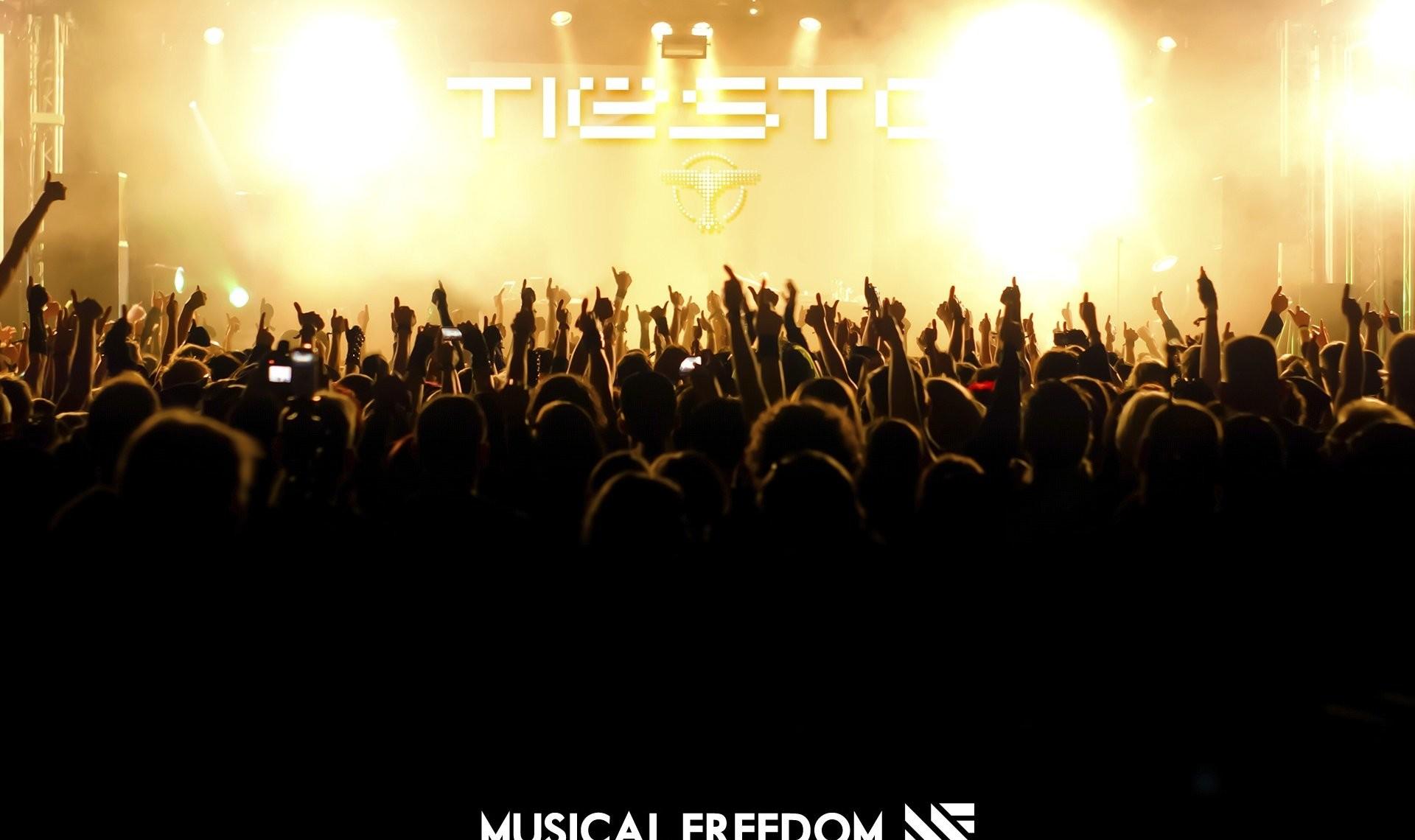 Tiesto Concert Crowd