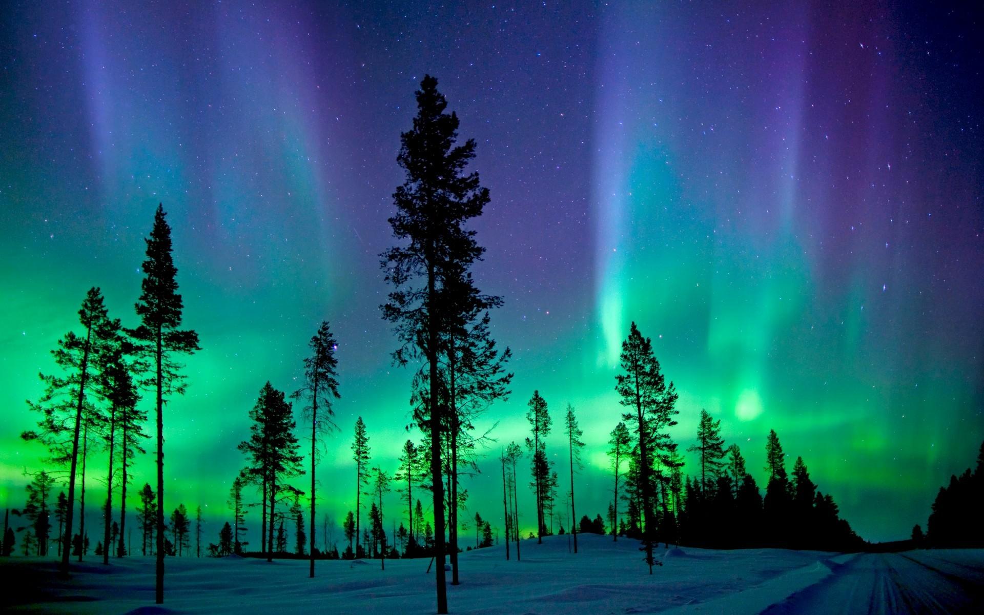 Nature / Northern Lights Wallpaper