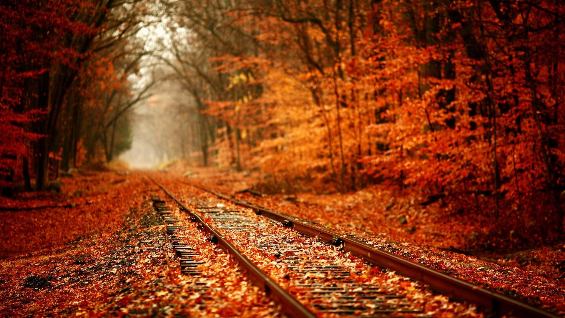 Beautiful-autumn-wallpaper-1920×1080-001