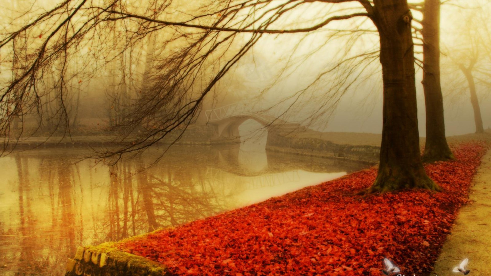 Wallpaper Autumn, Autumn Wallpapers for Desktop V Autumn Season Wallpaper  HD Wallpaper Hd Wallpapers 1920×1080