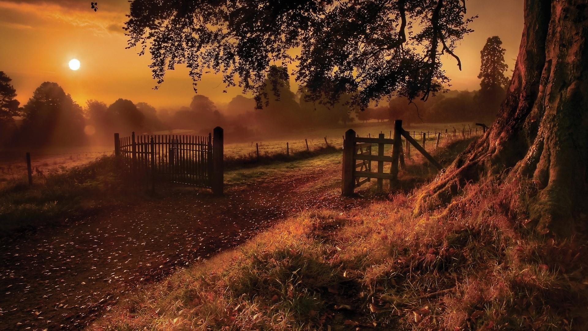 Autumn Wallpaper HD · Autumn Wallpaper