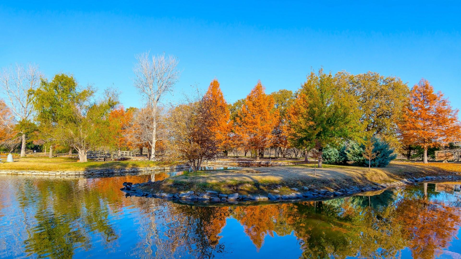 Wallpaper texas, usa, botanical garden, pond, autumn