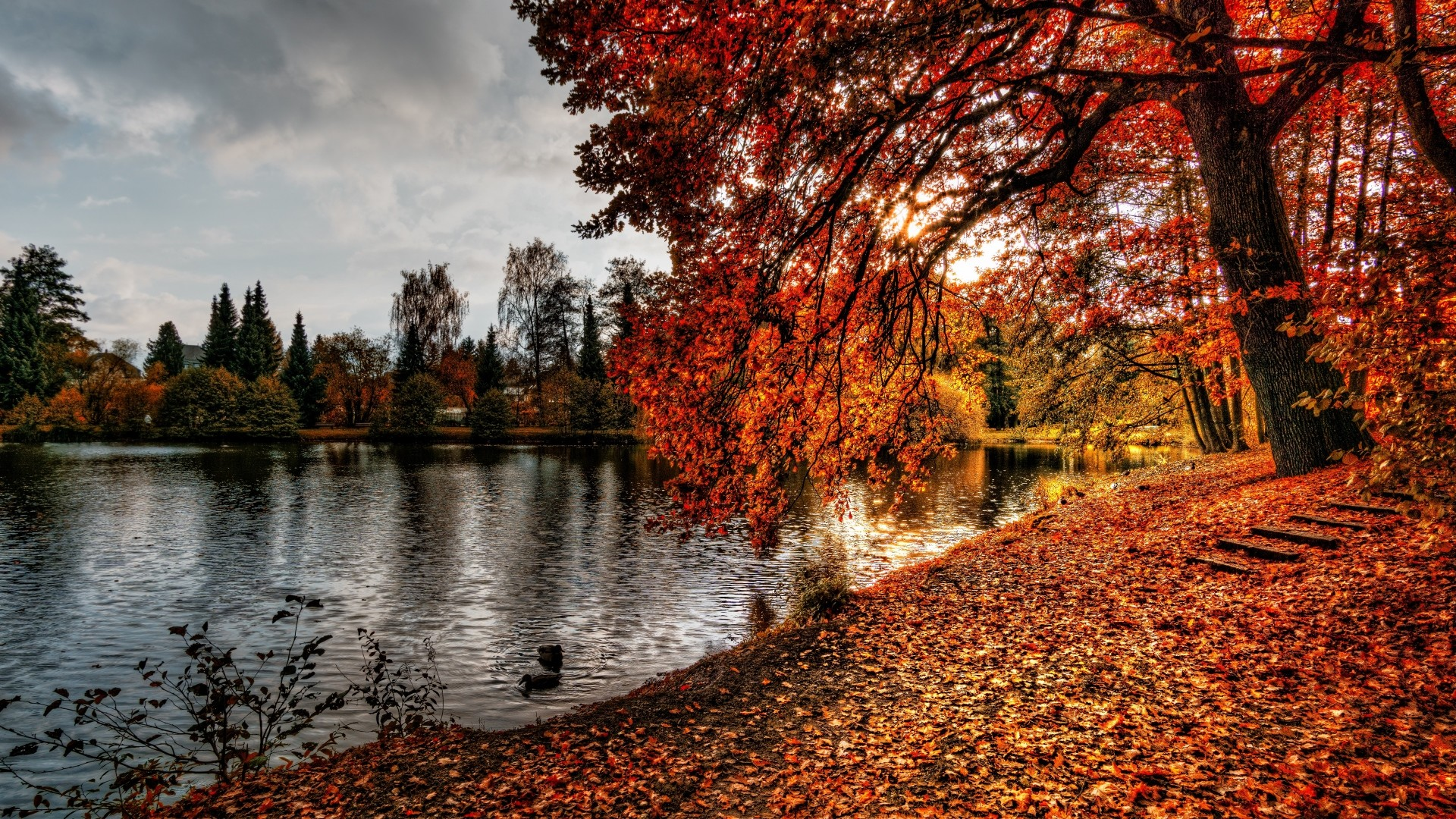 Preview wallpaper autumn, park, foliage, lake 1920×1080